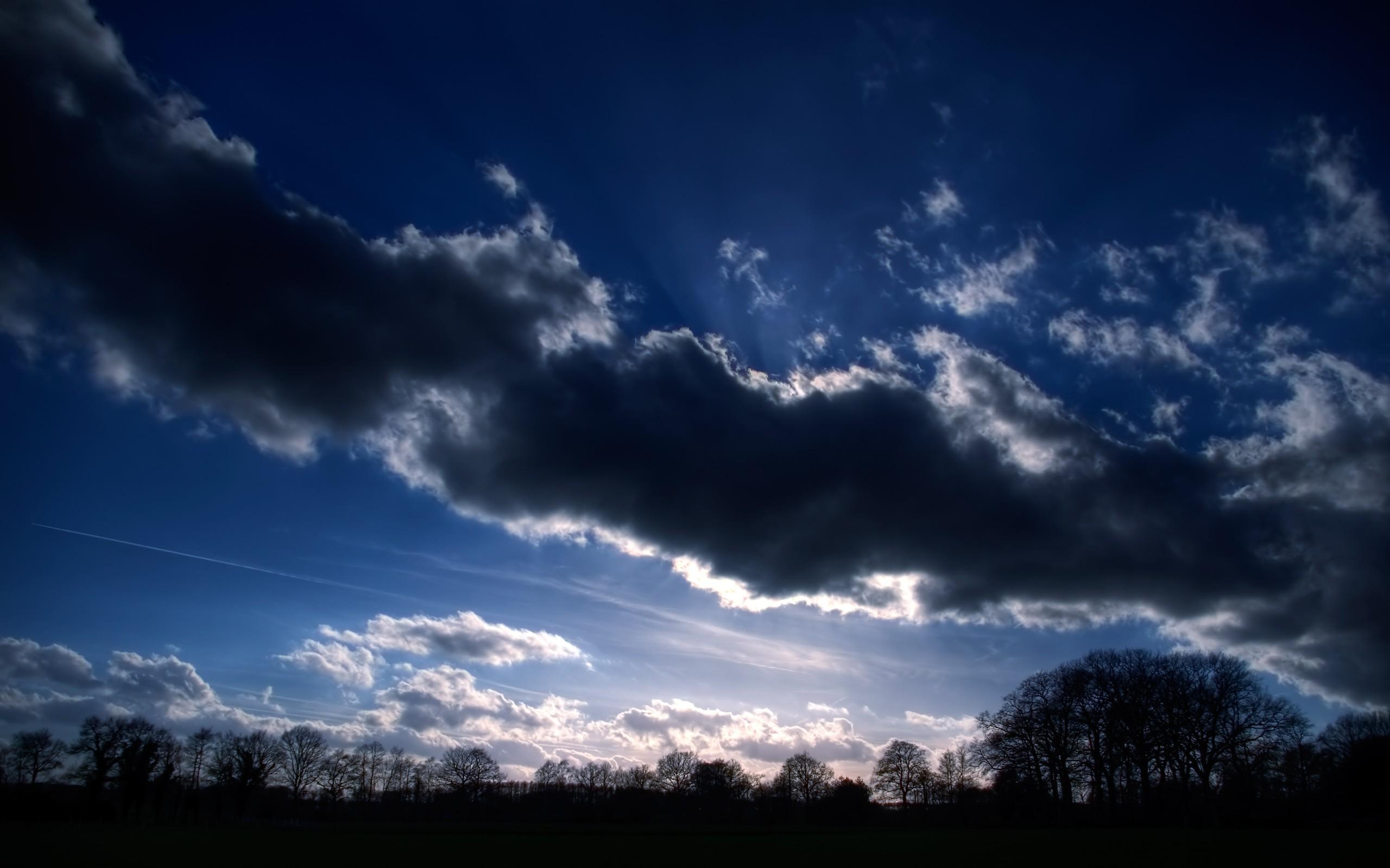 Киты в небе картинки высокого разрешения белова