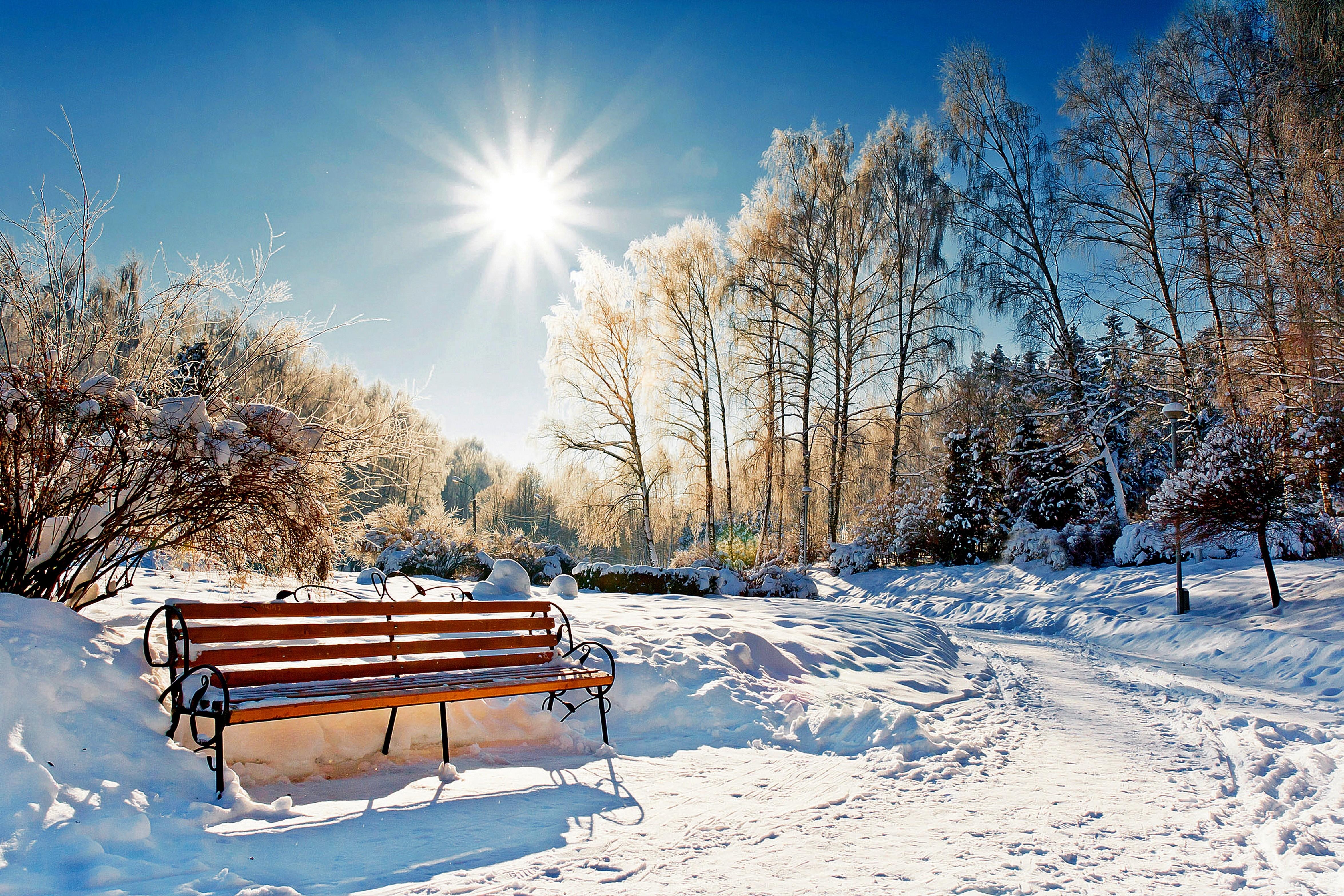зимнее солнечное утро картинки