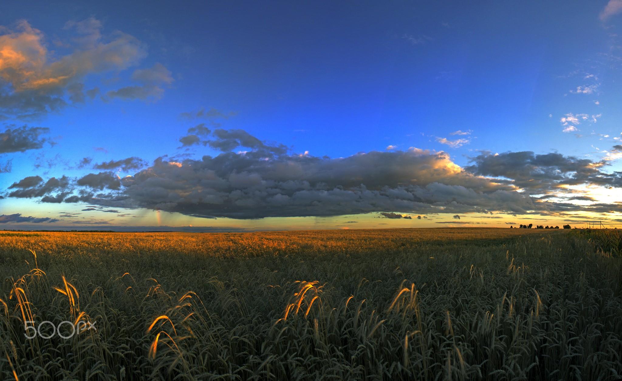 плохого очень качественные фото украинская степь этот