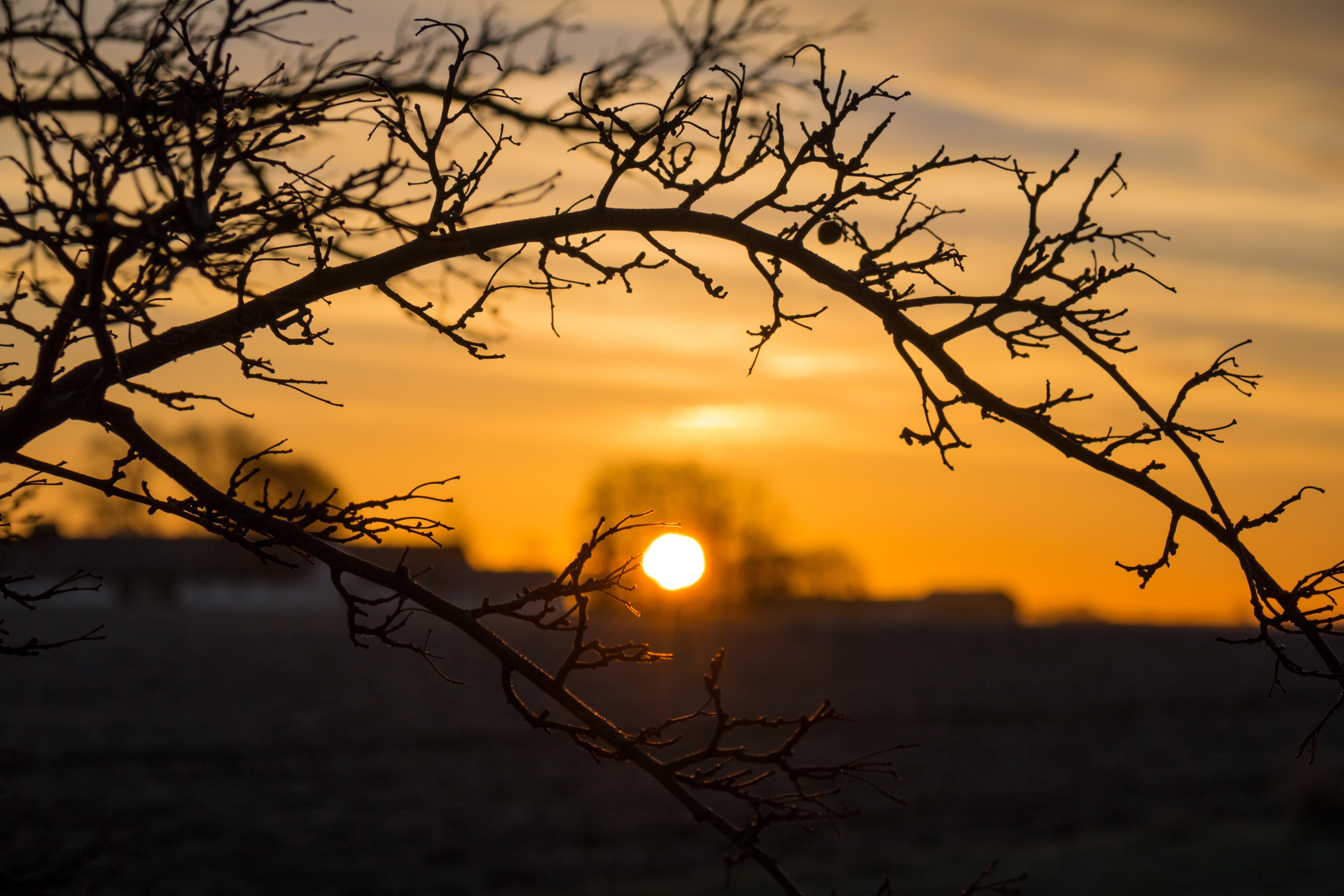 Wallpaper Sunlight Landscape Sunset Nature Reflection Sky