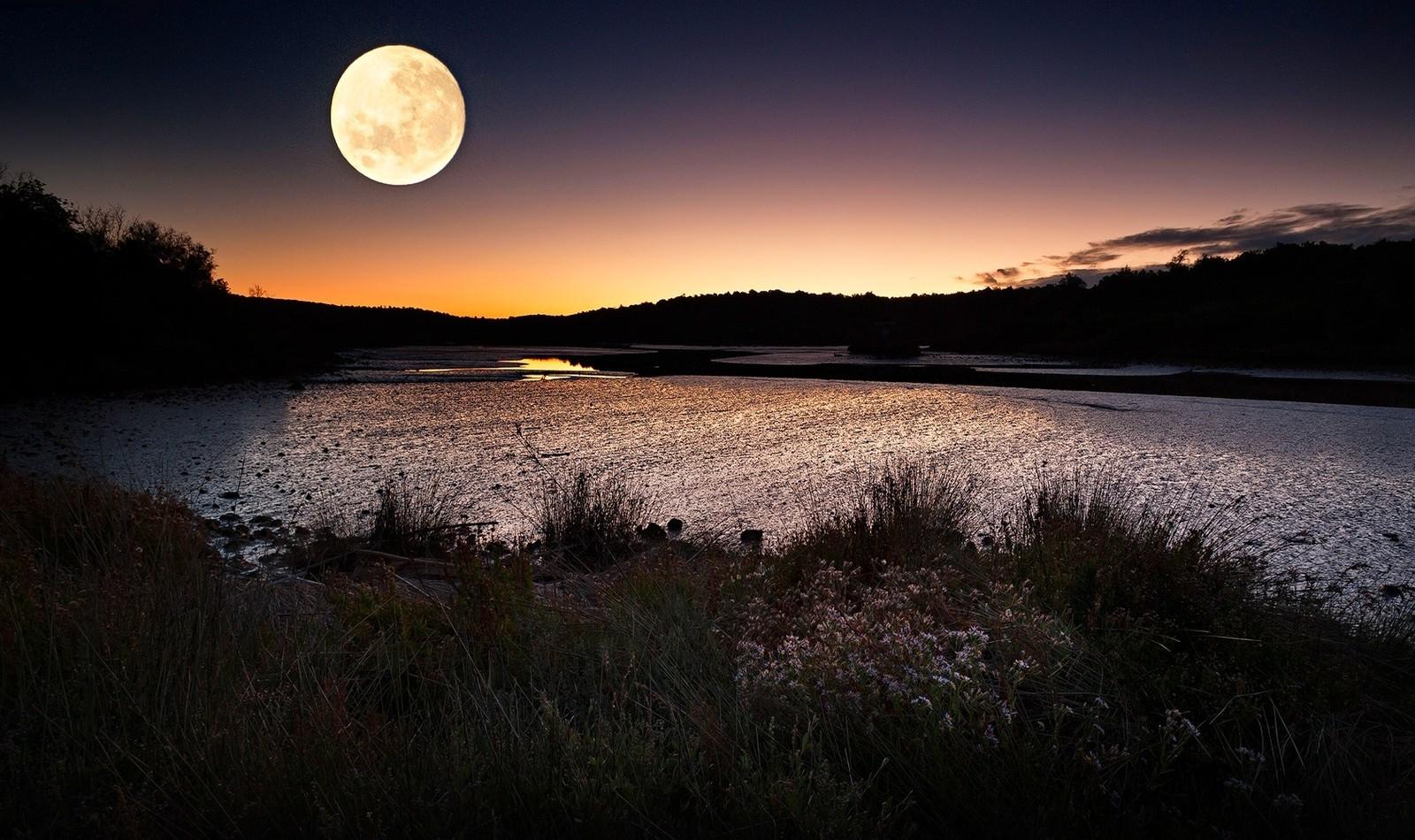 просто хотел картинка ночной берег озера тюмени купите домашних