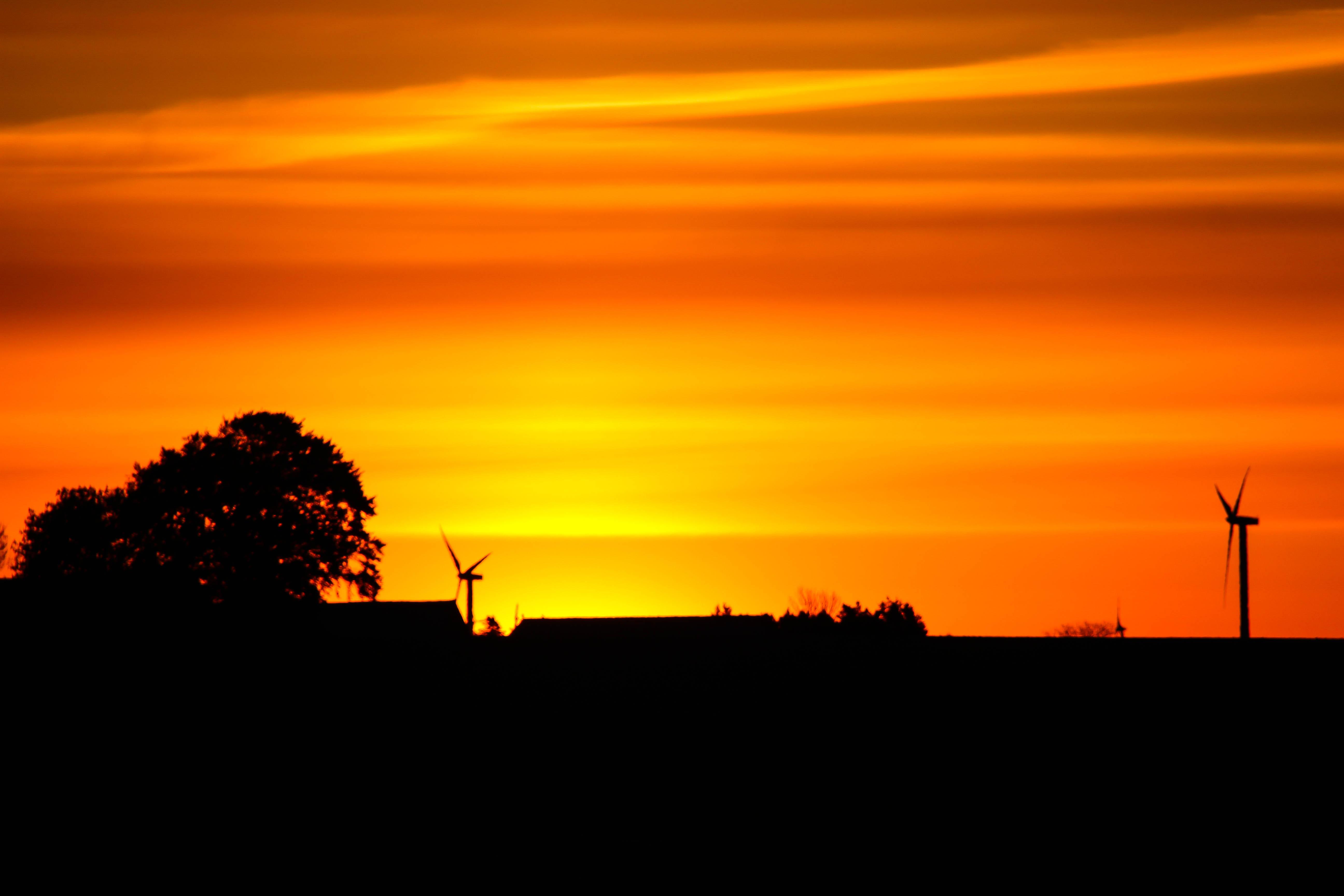sunlight landscape sunset sky field silhouette sunrise yellow evening morning Sun orange horizon atmosphere dusk cloud tree dawn himmel gul landskap gryning llandscape soderslatt computer wallpaper atmosphere of earth afterglow red sky at morning ecoregion 845281