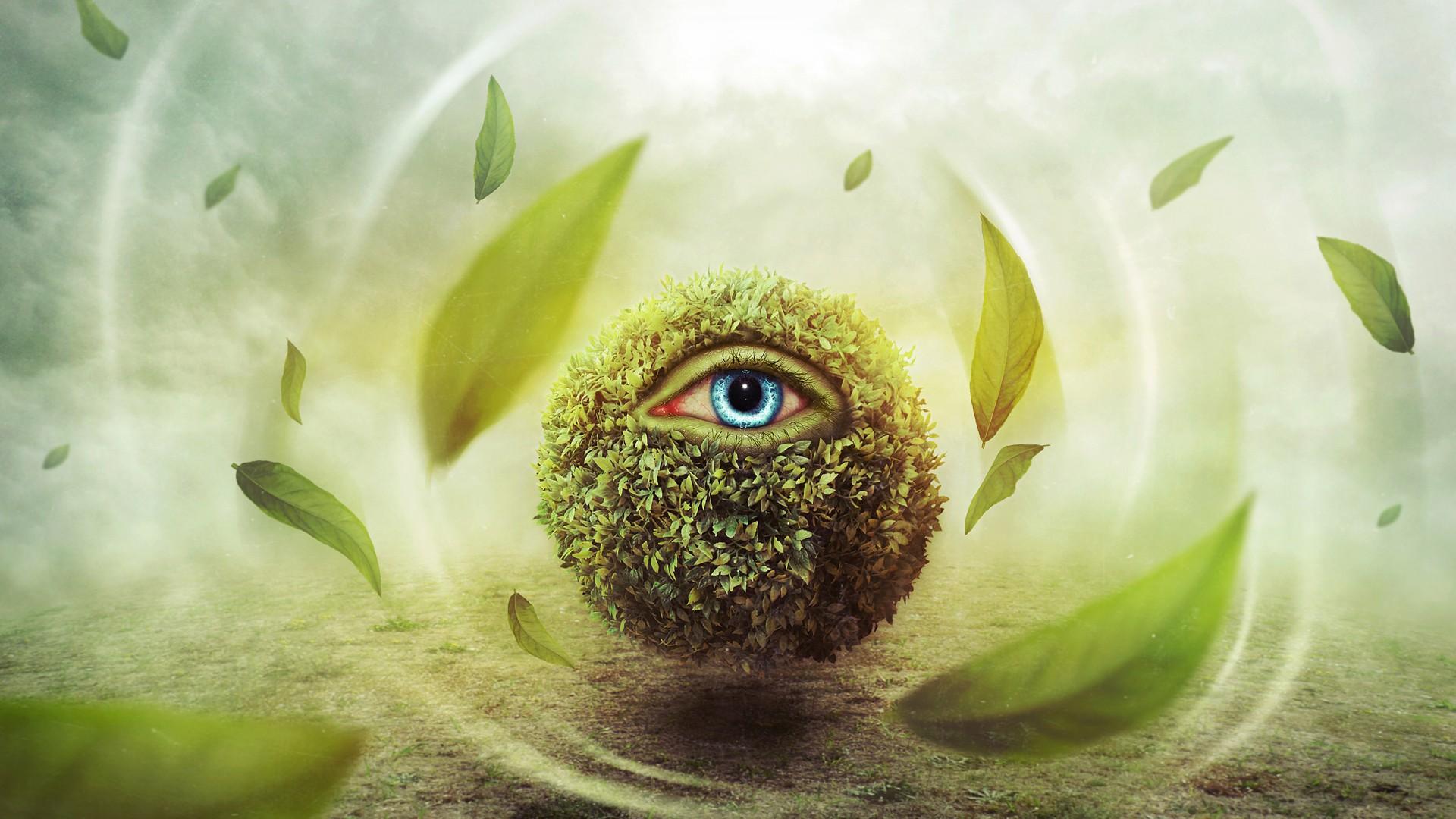 природа глазами человека картинки это