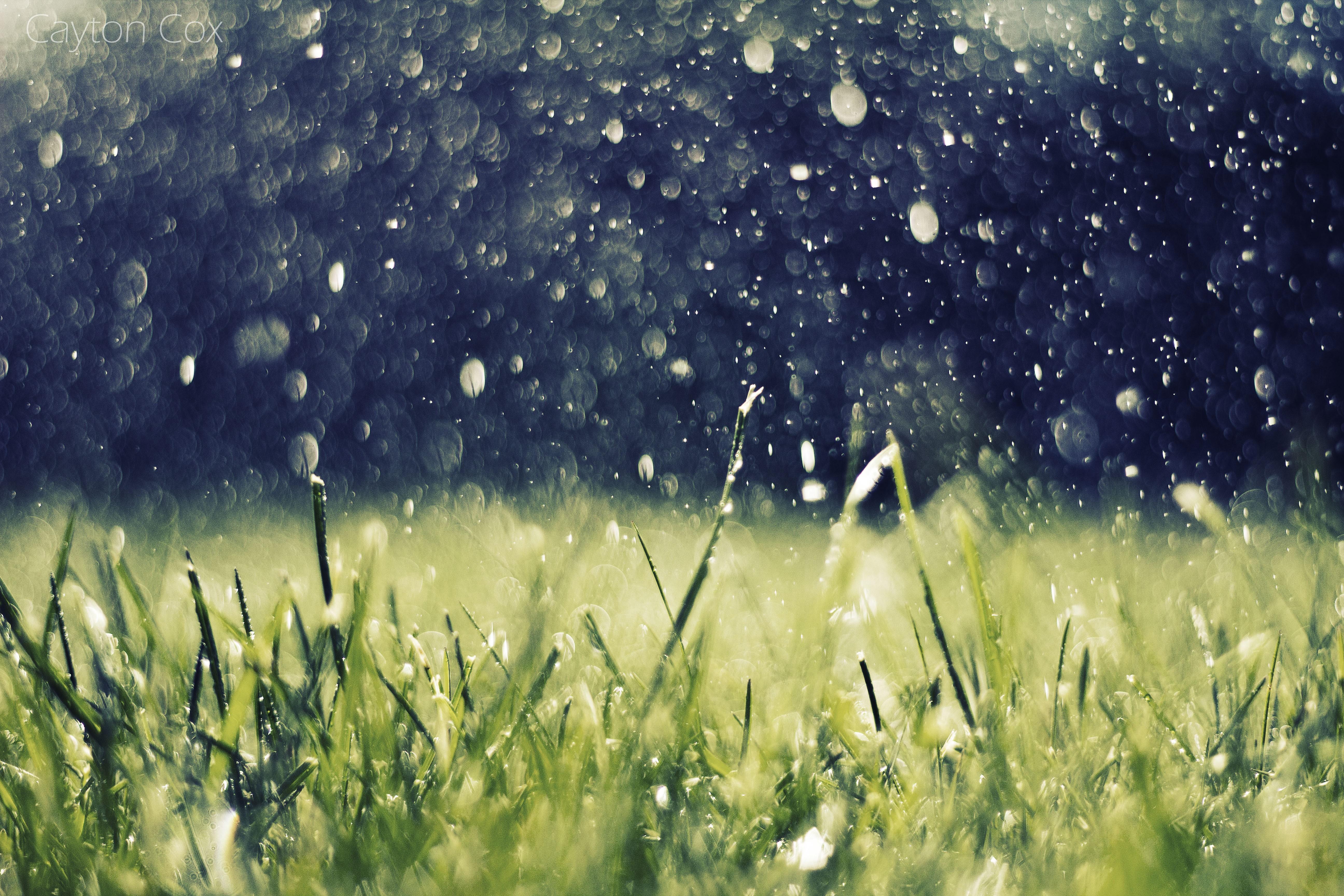картинки для дождя них представляет