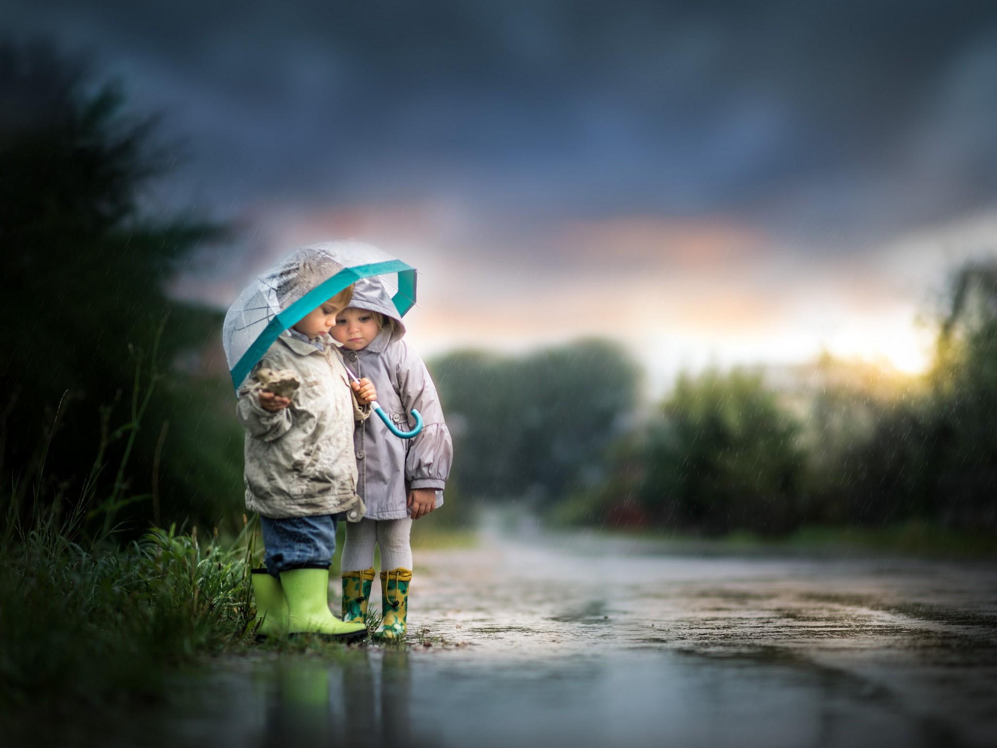 Wallpaper : Sunlight, Nature, Reflection, Rain, Umbrella