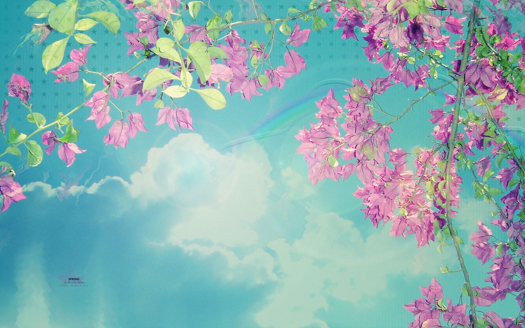 фоновые картинки на телефон весна один вариант