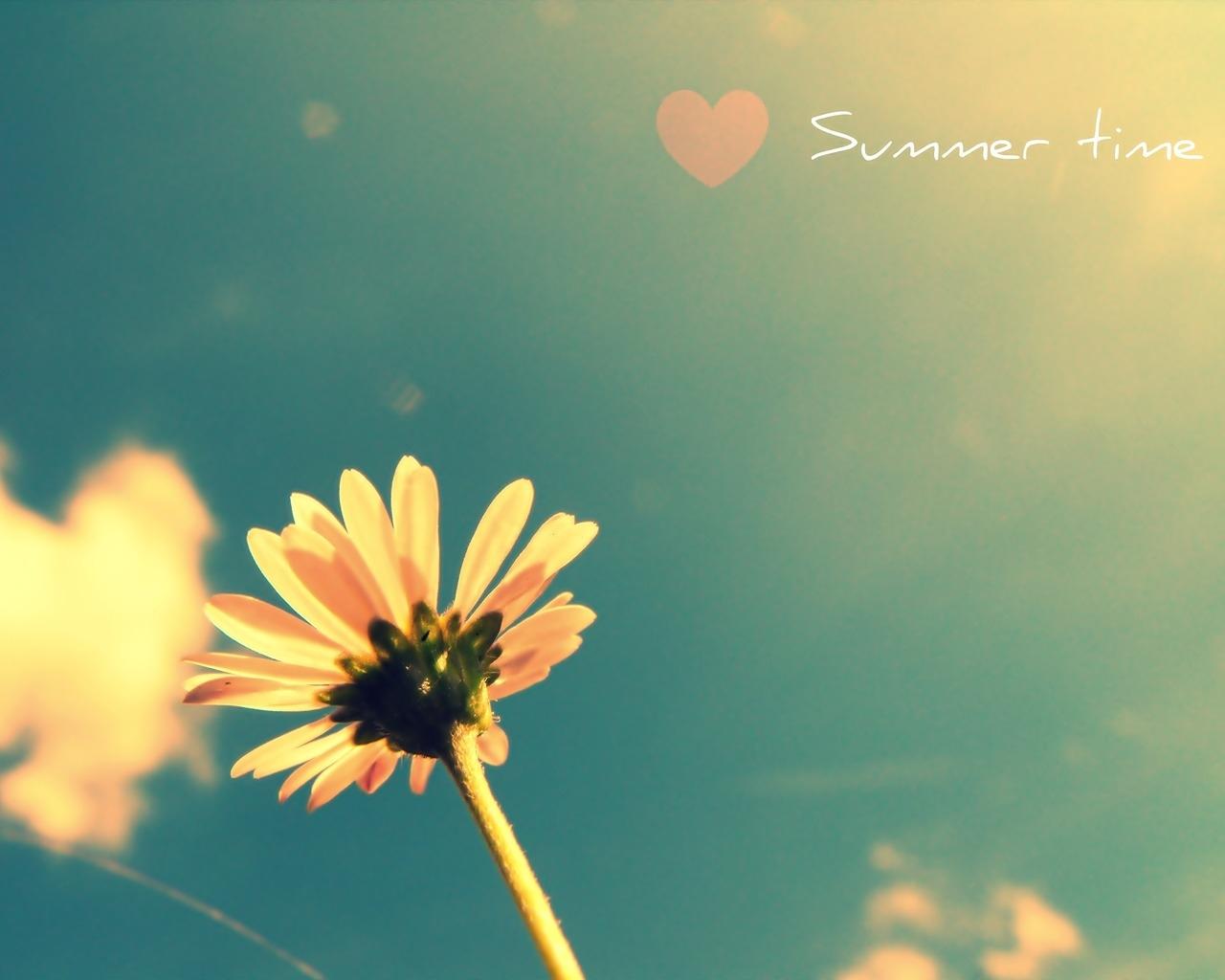 обои для рабочего стола лето любовь № 449394 бесплатно