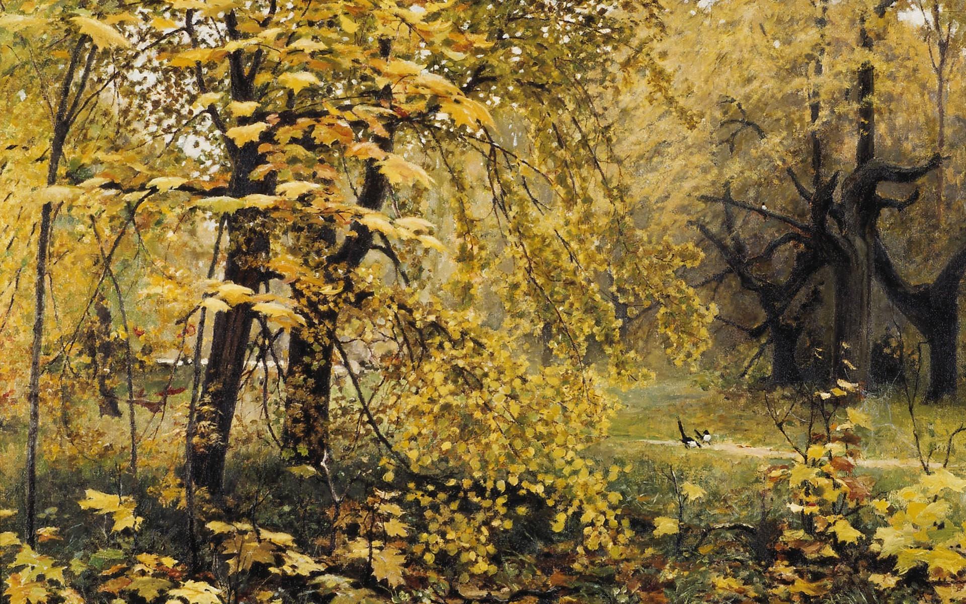 Masaüstü Güneş ışığı Boyama Orman şube Sarı Huş Ağacı Ağaç
