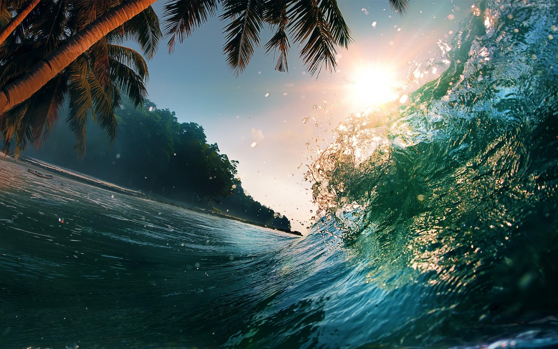 Fond d'écran : lumière du soleil, mer, eau, la nature, réflexion, vagues, palmiers, océan, vague ...