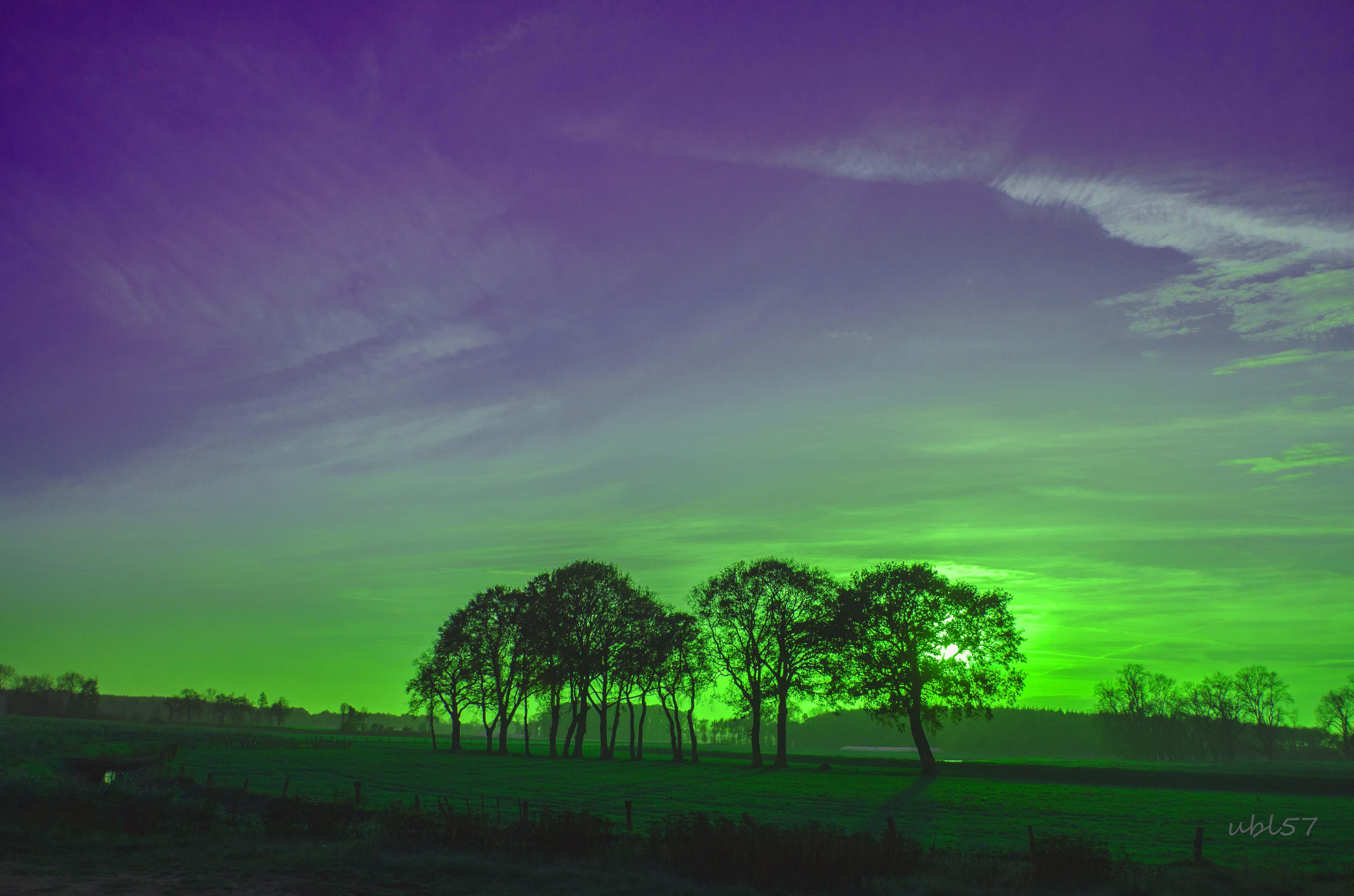 Зеленая ночь картинки