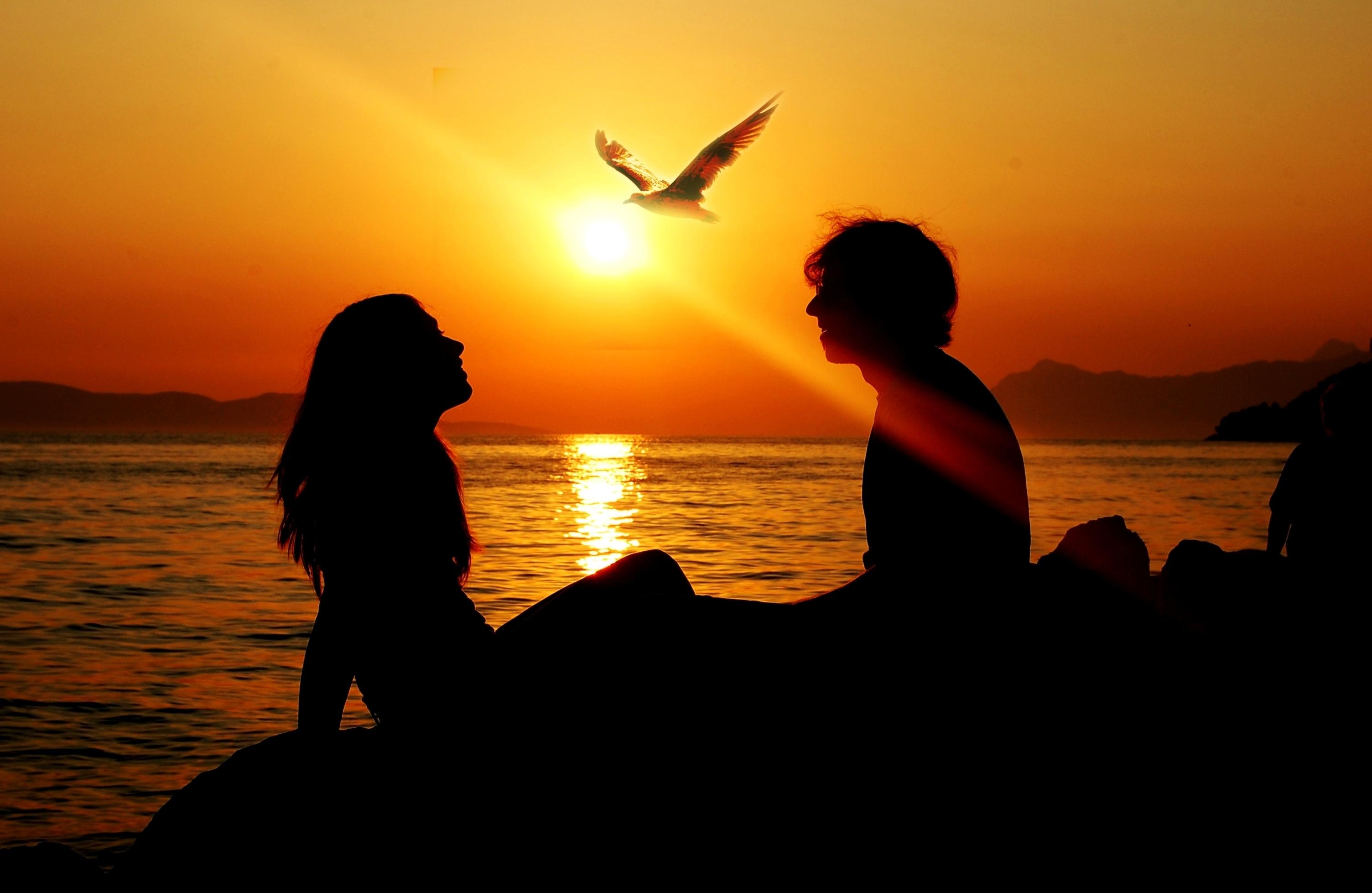 Wallpaper sunlight sunset love silhouette sunrise evening sunlight sunset sea love silhouette sunrise evening morning sun horizon summer dusk freedom ray dawn bird altavistaventures Images