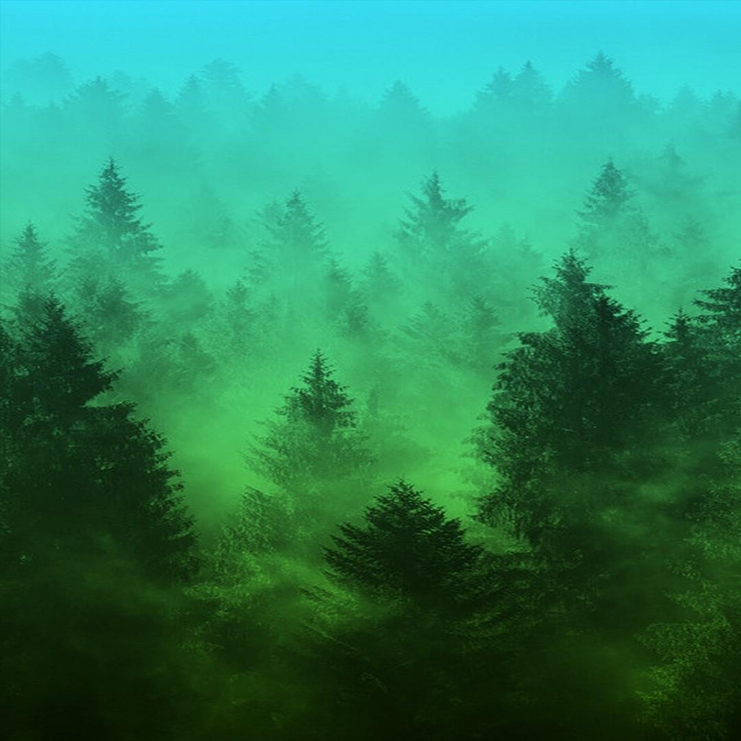 Зеленый туман картинки