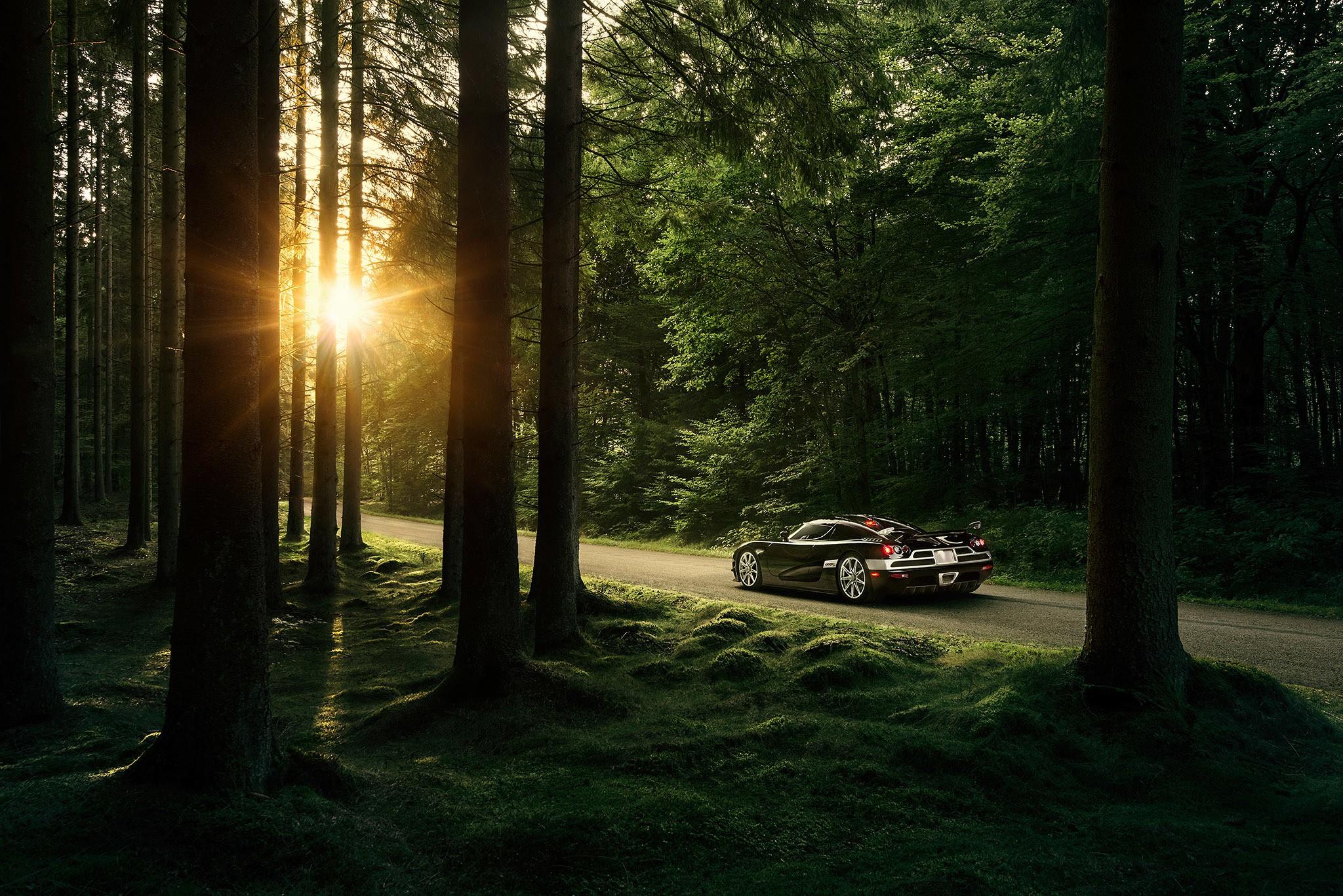 машина в лесу картинка для выбор женских курток