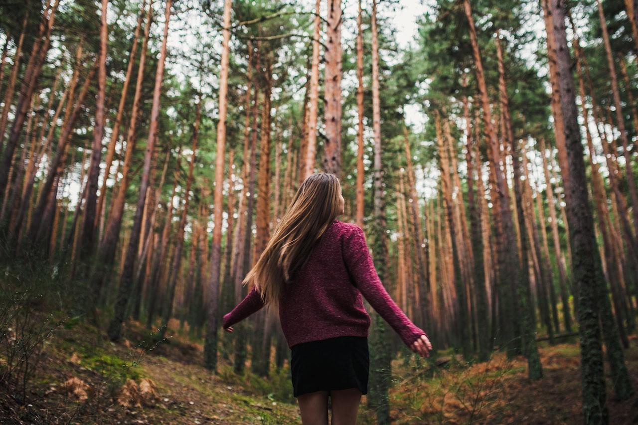 Wallpaper : sunlight, forest, women outdoors, model, depth