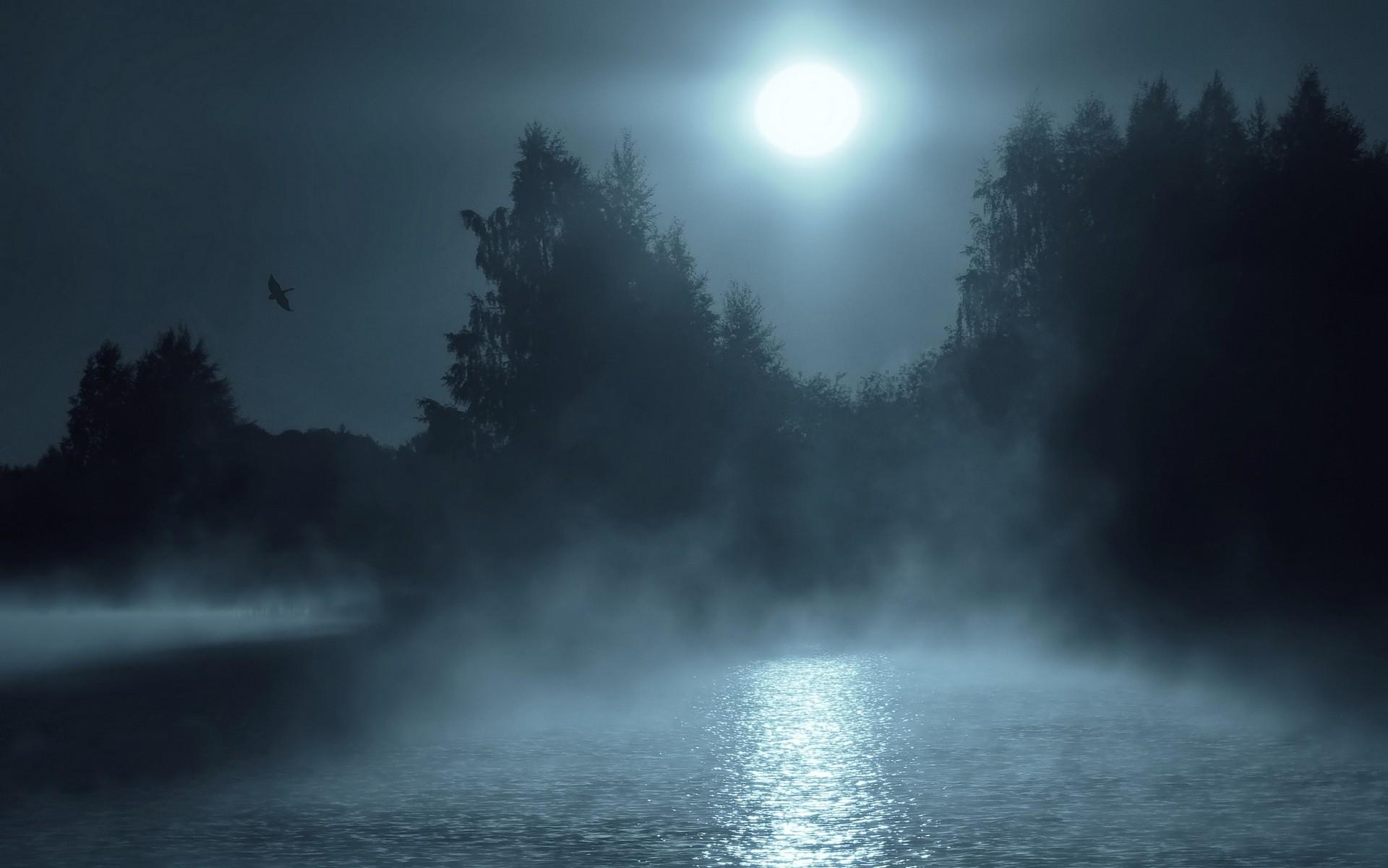 картинки на тему ночь и густой туман этого