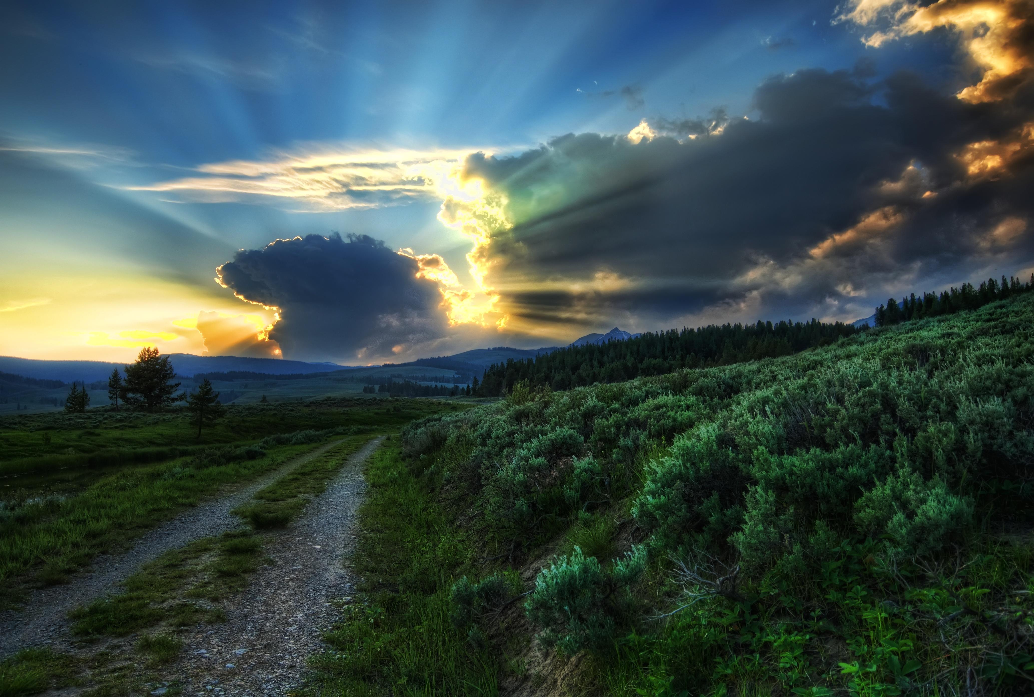 Обои высокая трава, сумерки, облака. Природа foto 12