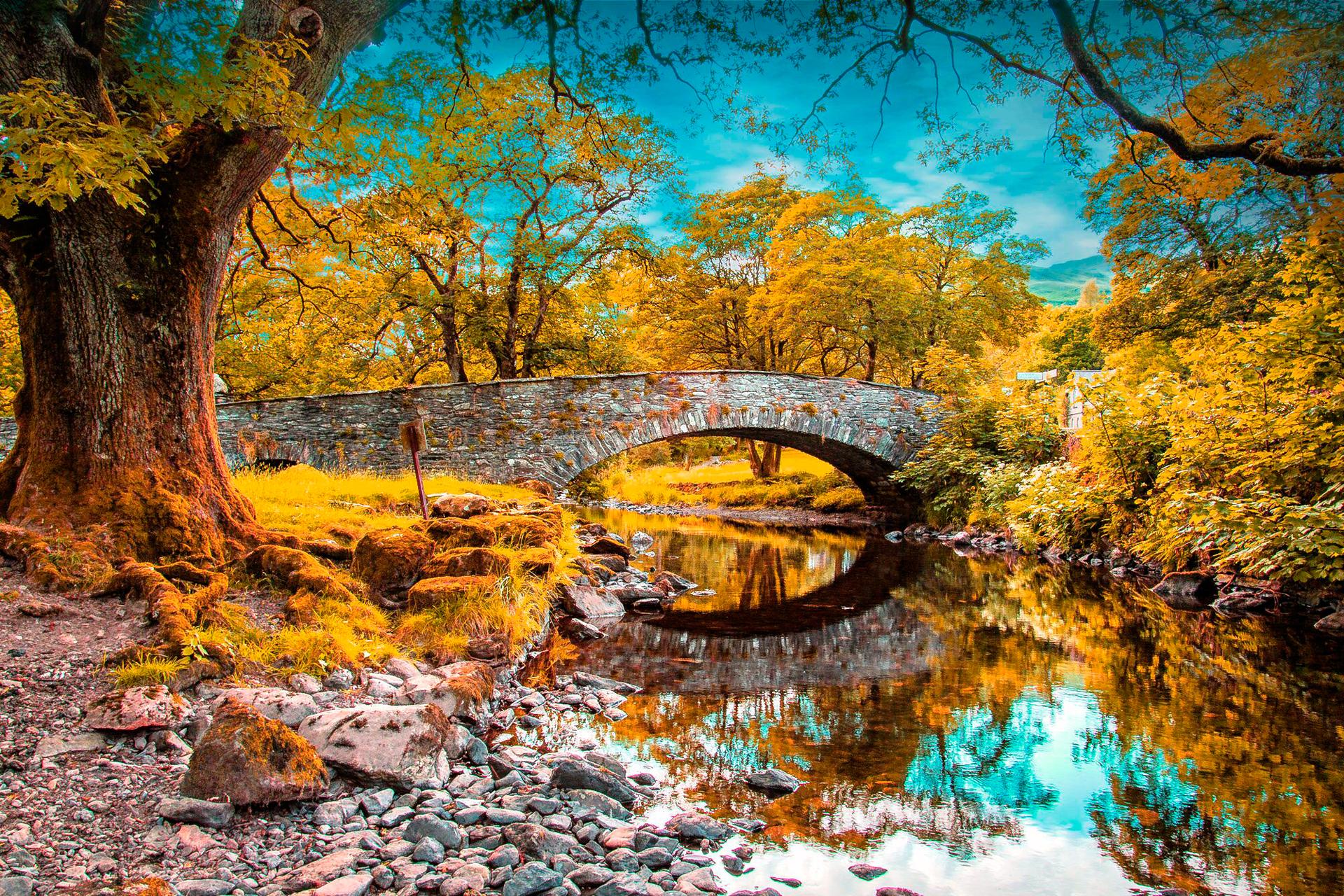 панорамные постеры природа осень годами меняется