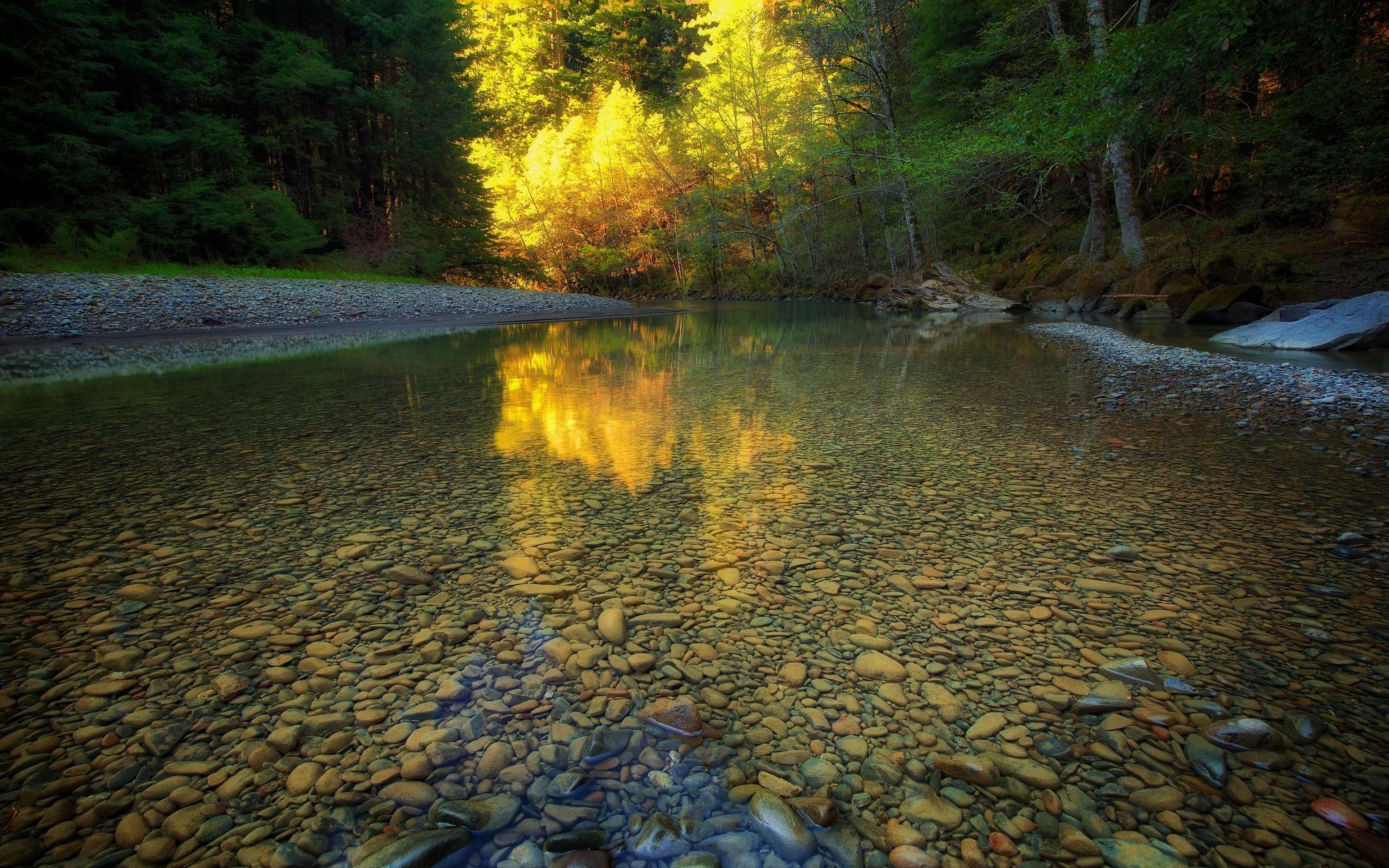 прозрачные реки и озера фото так увлеклась, что