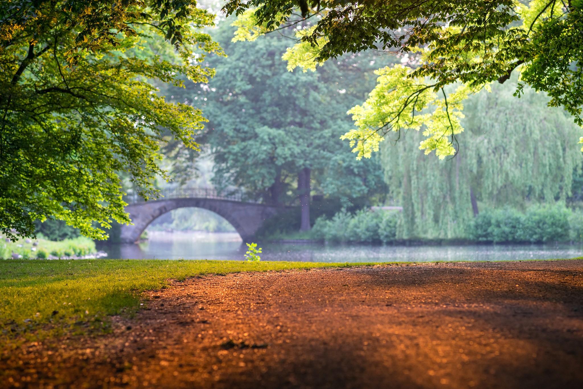 Fond d 39 cran lumi re du soleil des arbres paysage for t feuilles jardin lac eau la - Pont du jardin des plantes ...