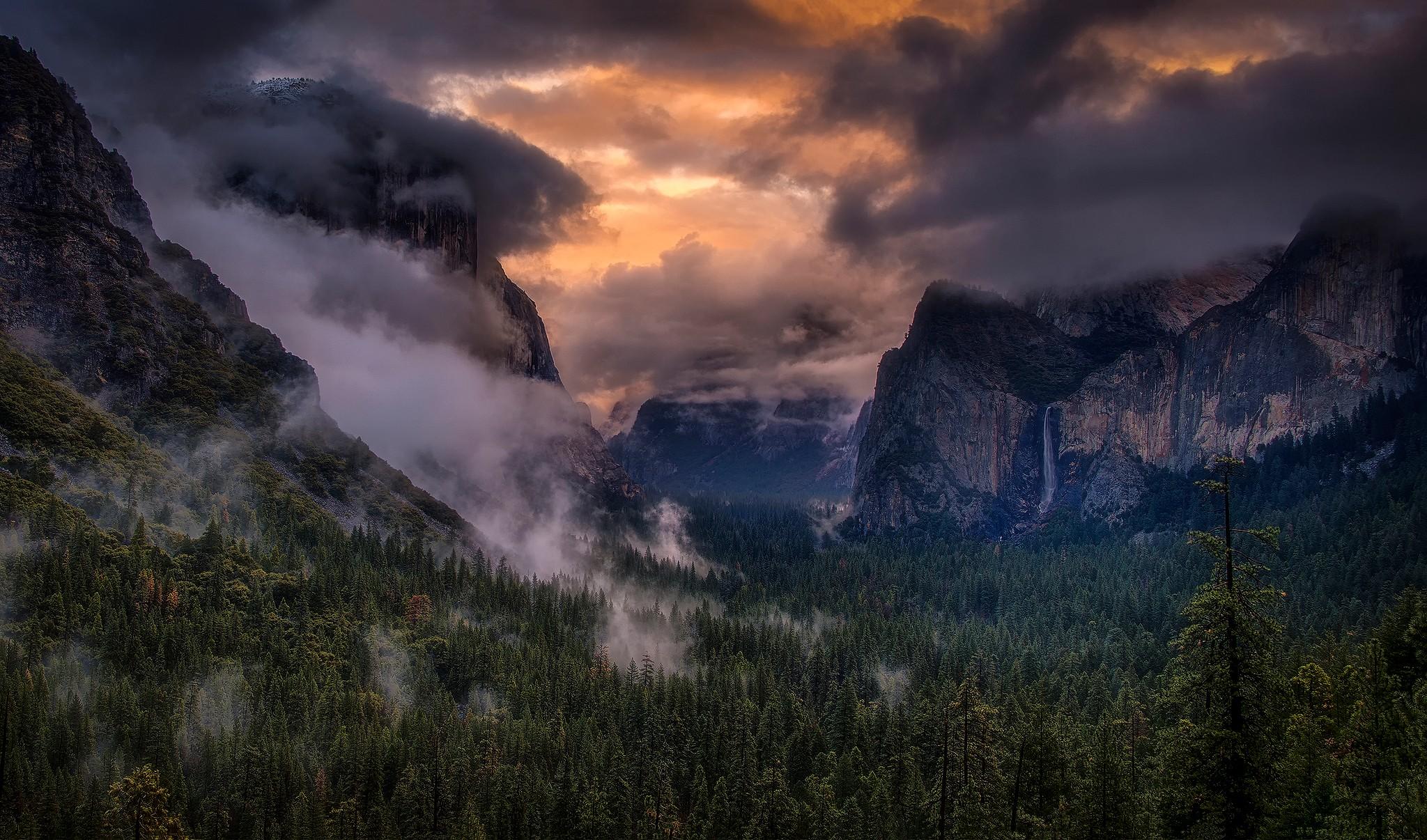 Картинка лес горы и туман