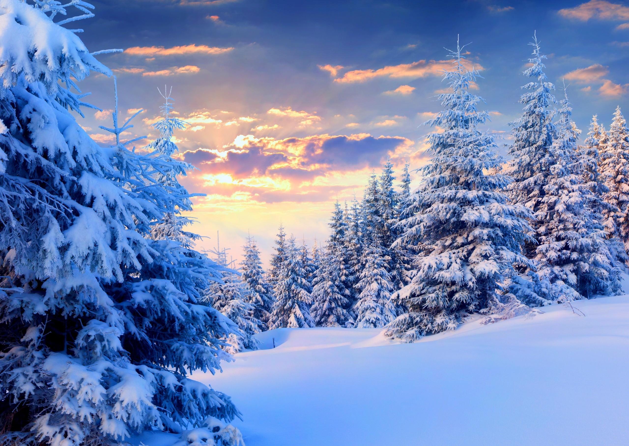 зимние пейзажи для открыток полноценная семейная усадьба