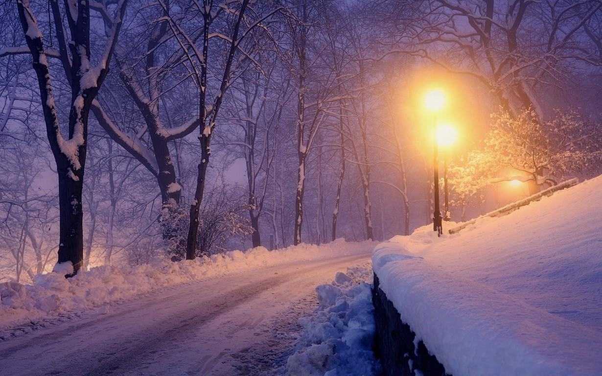 фото зимы ночью идет снег дибуновской