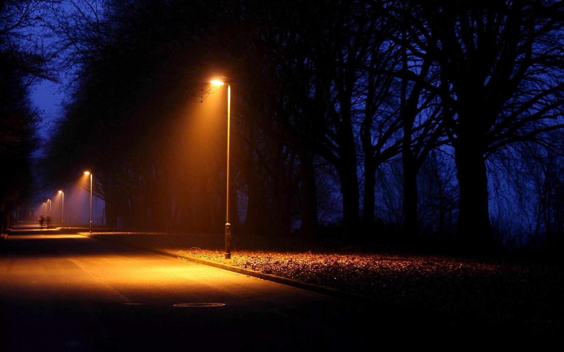 Sunlight Trees Landscape Lights Street Light Night Nature Plants Road Photography Evening Morning Moonlight Atmosphere Dusk