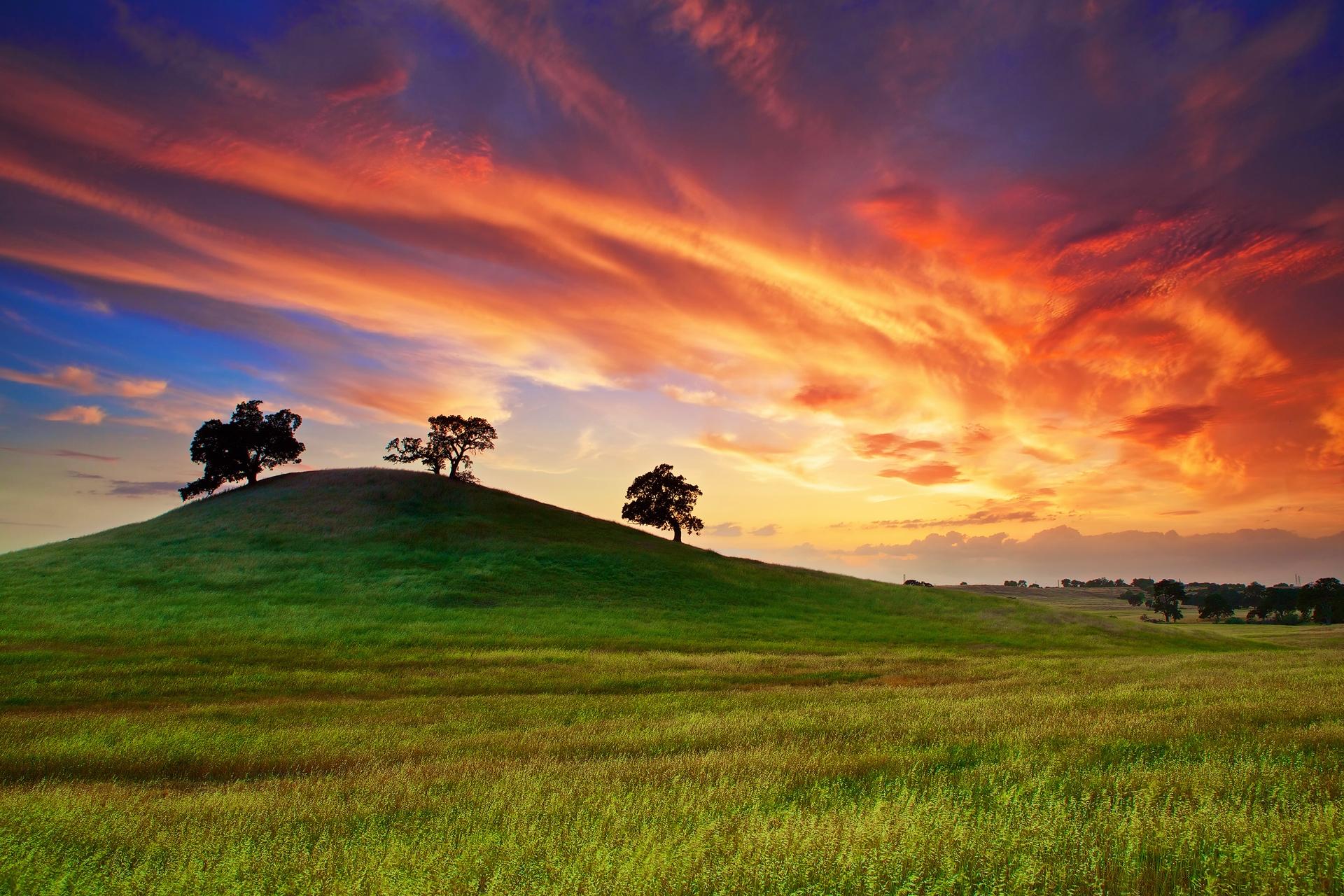 Wallpaper : sunlight, trees, landscape, sunset, hill ...