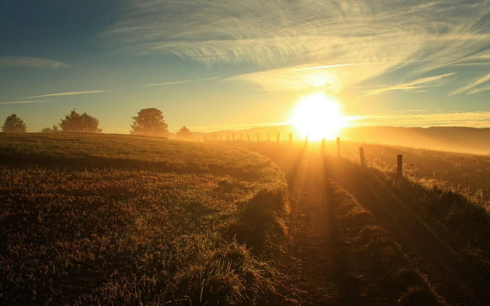 людей утро лето рассвет солнце красивые картинки они