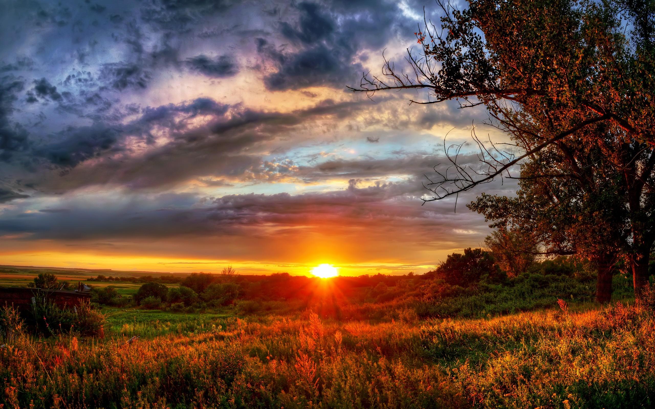 солнца картинки природы заката