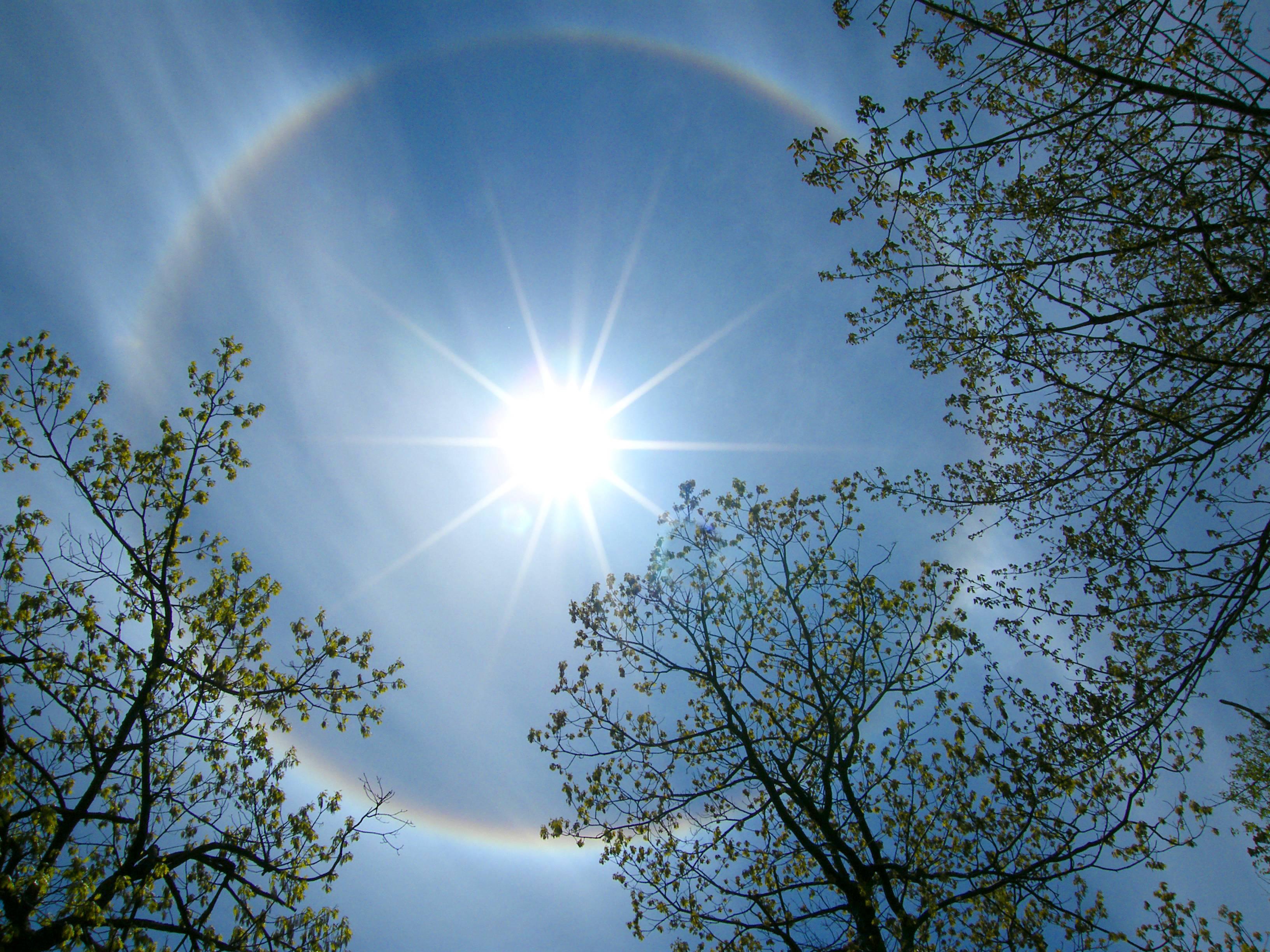 как солнце весне помогало фото нам ваш