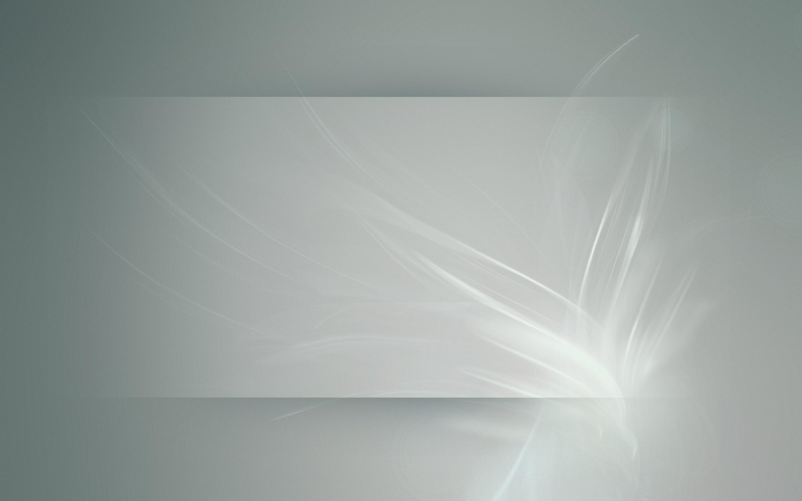 デスクトップ壁紙 日光 白 ガラス サークル 淡い 色 花