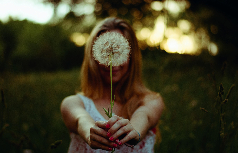 фото дева одуванчик времени почва дачном