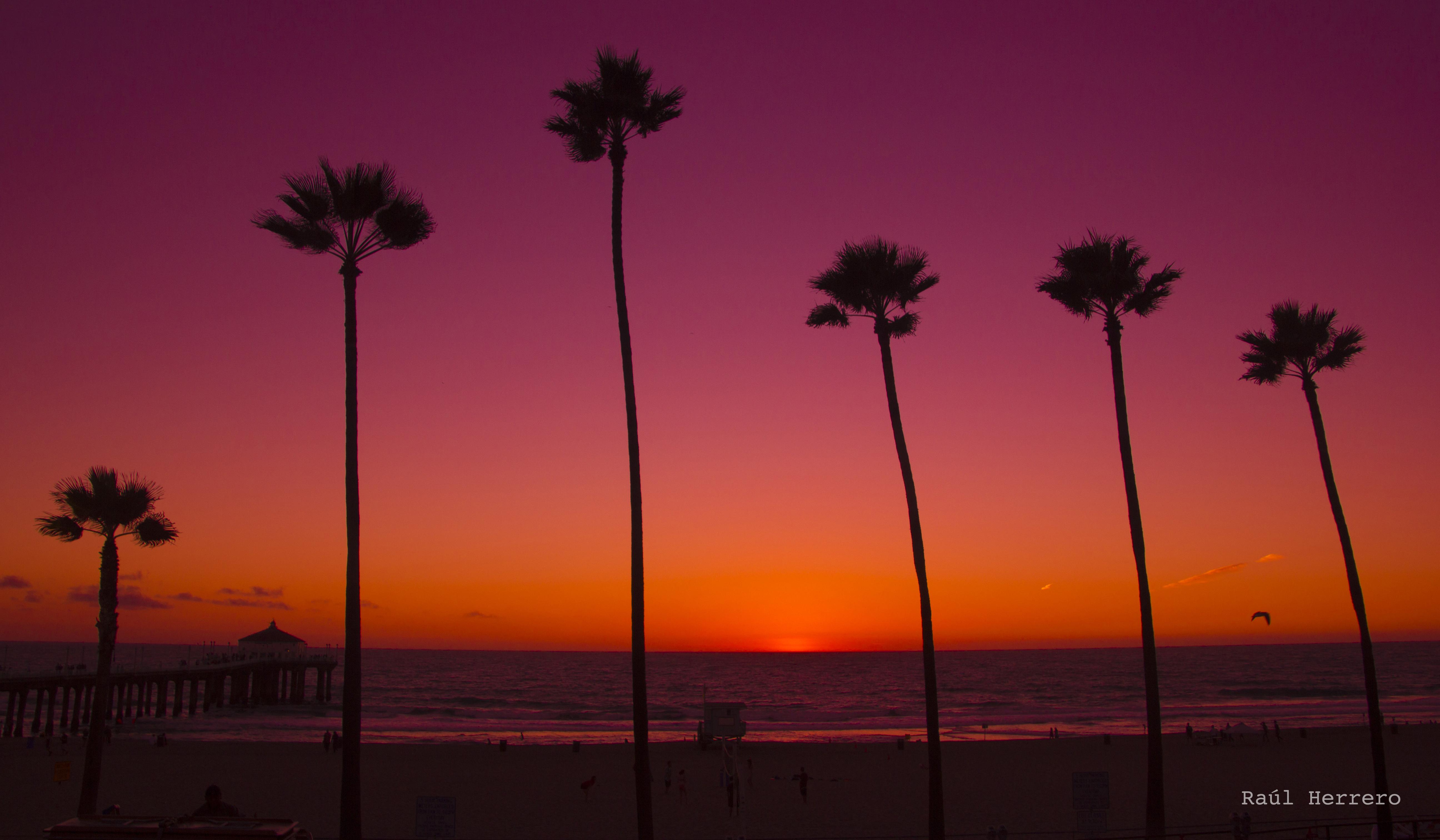 デスクトップ壁紙 日没 日の出 落ち着いた イブニング 太陽