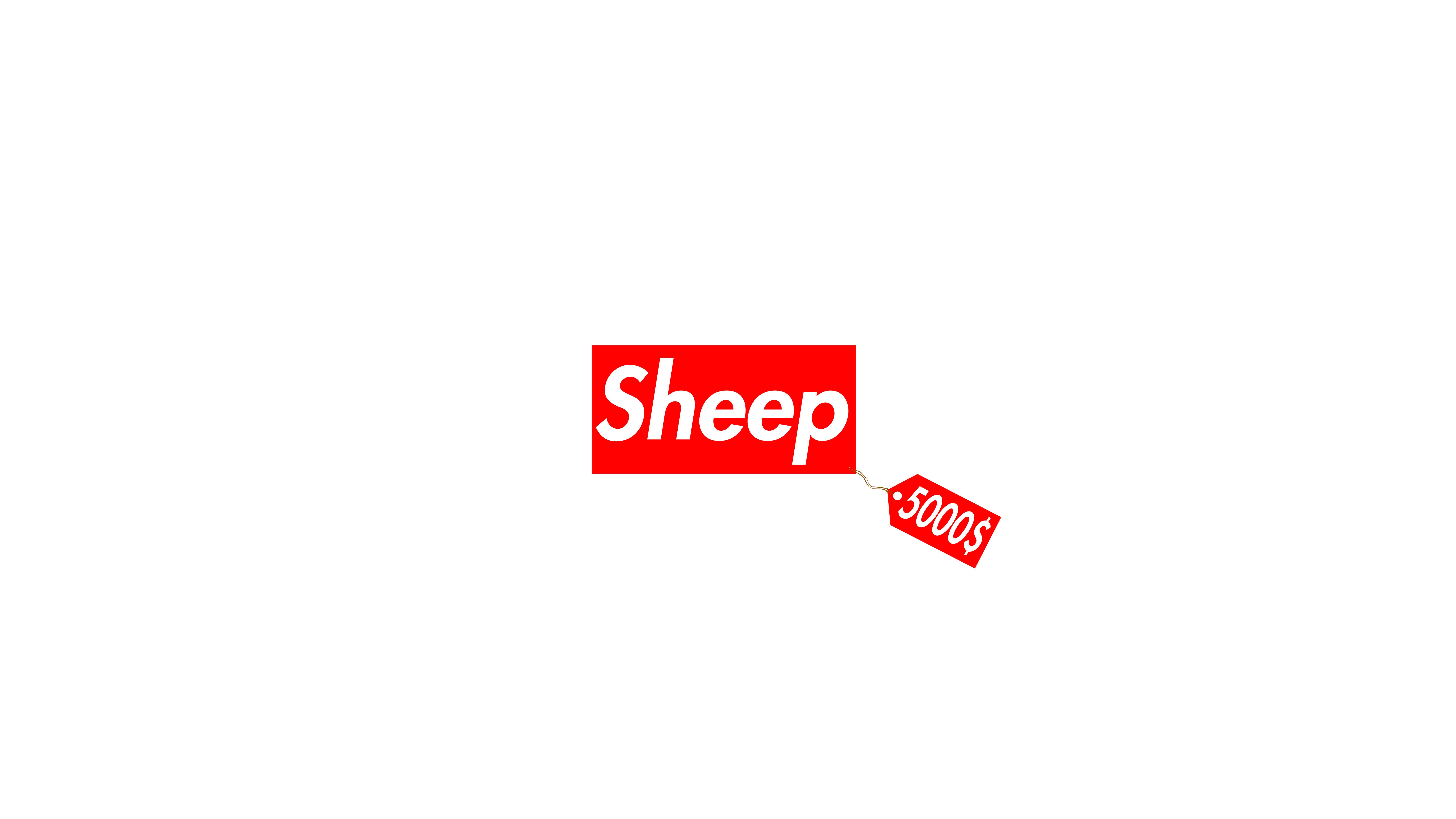 Wallpaper Supreme Sheepy Expensive Sheep Simple