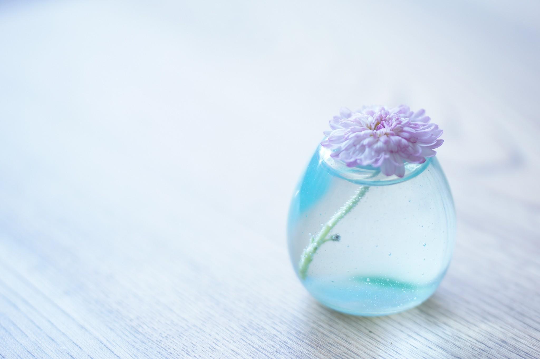 Table Blue Glass Flower Hand Petal Vase Macro Photography