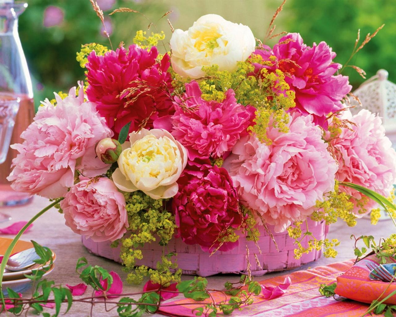решили уходить, самые красивые цветы в блогах фото подчеркивала