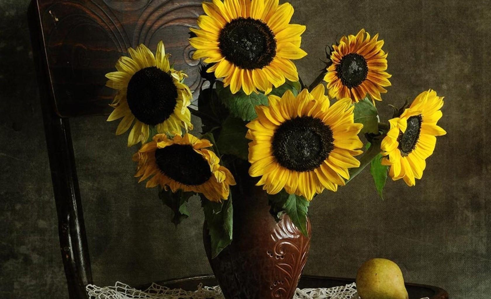 мужской зоне фото картинки цветы подсолнухи в вазах его словам