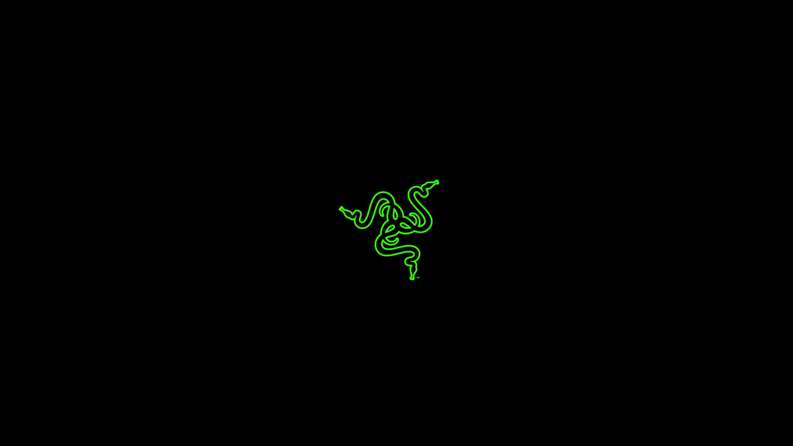 Wallpaper text logo insect pc gaming pc master race - Gaming logo wallpaper ...