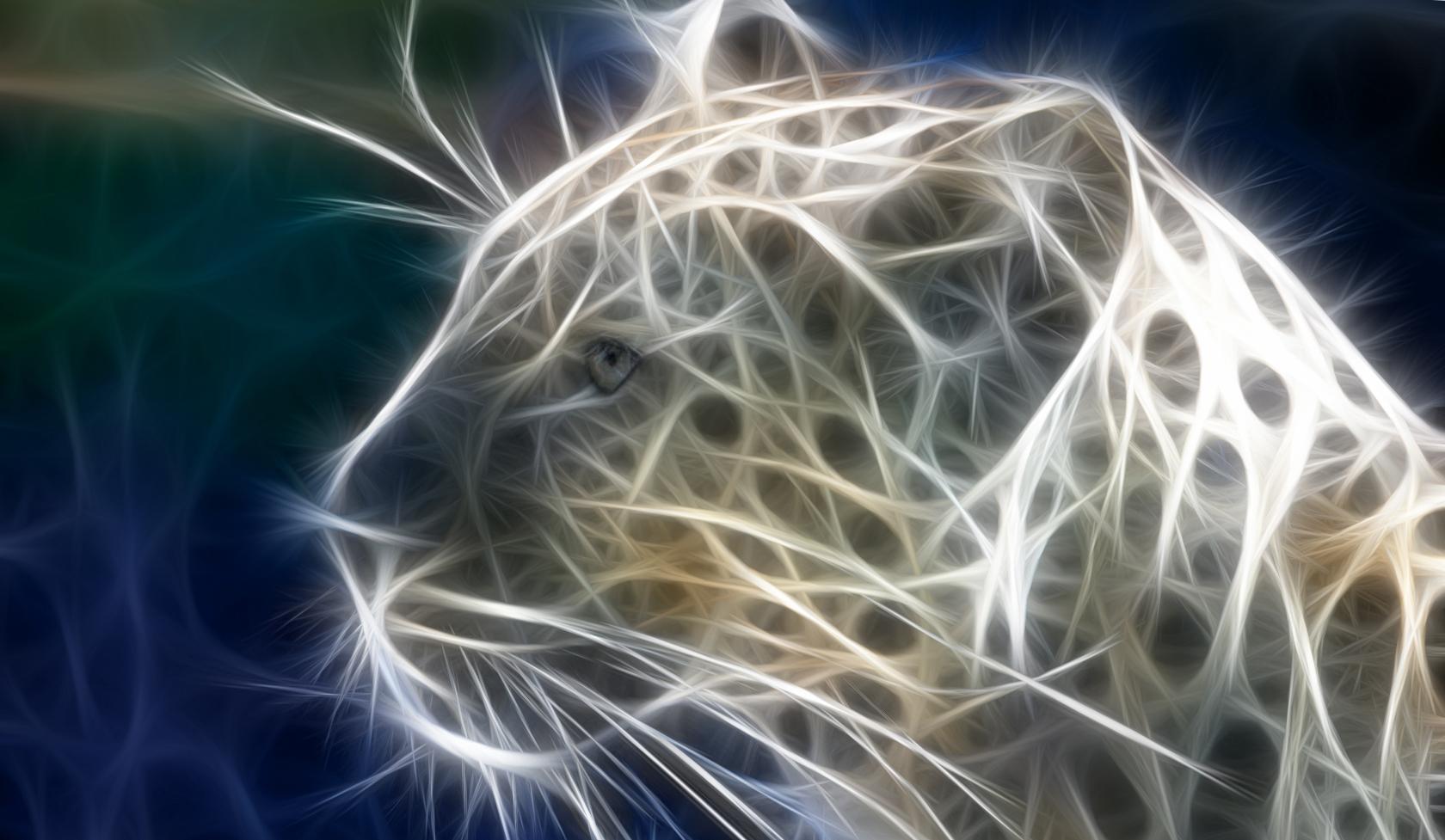 Обои леопард, Кошка, морда. Кошки foto 15