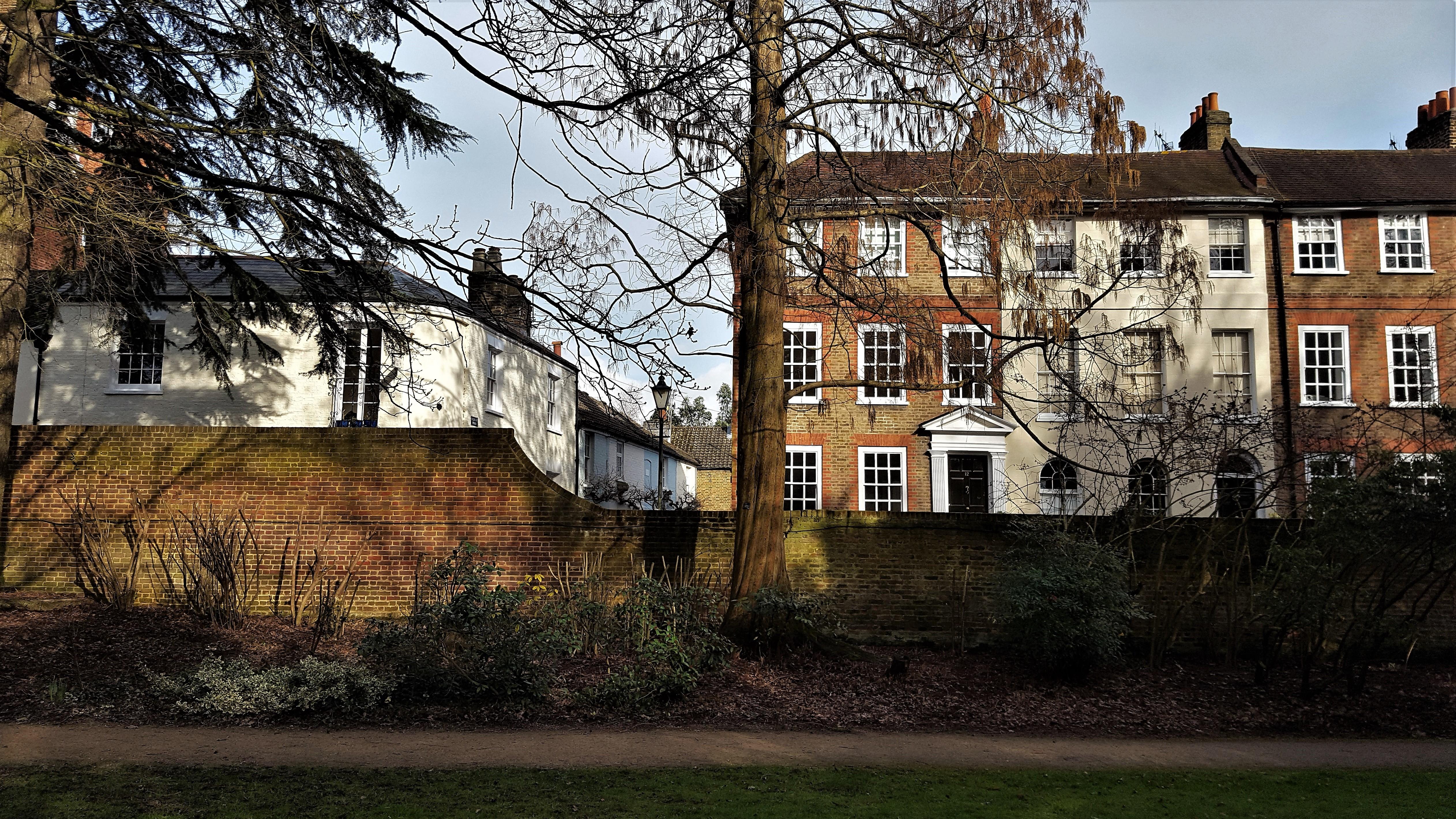 Wallpaper : trees, London, window, garden, city, apartments ...