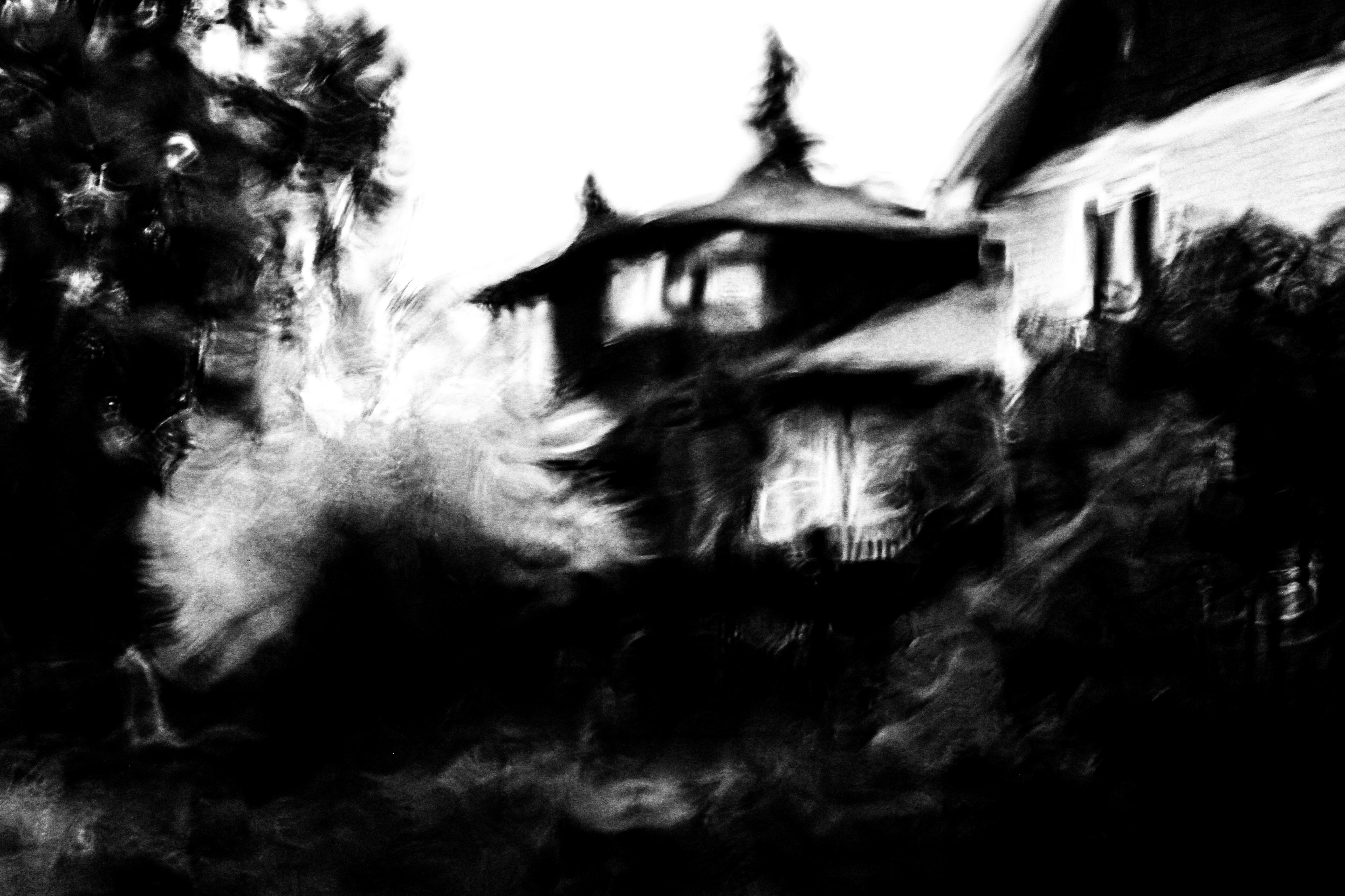 hintergrundbilder b ume schwarz einfarbig nacht abstrakt gespenstisch regen halloween. Black Bedroom Furniture Sets. Home Design Ideas