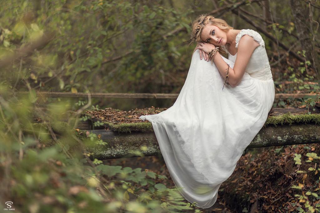 Fond d 39 cran des arbres for t feuilles blanc femmes for Feuille de piano robe de mariage