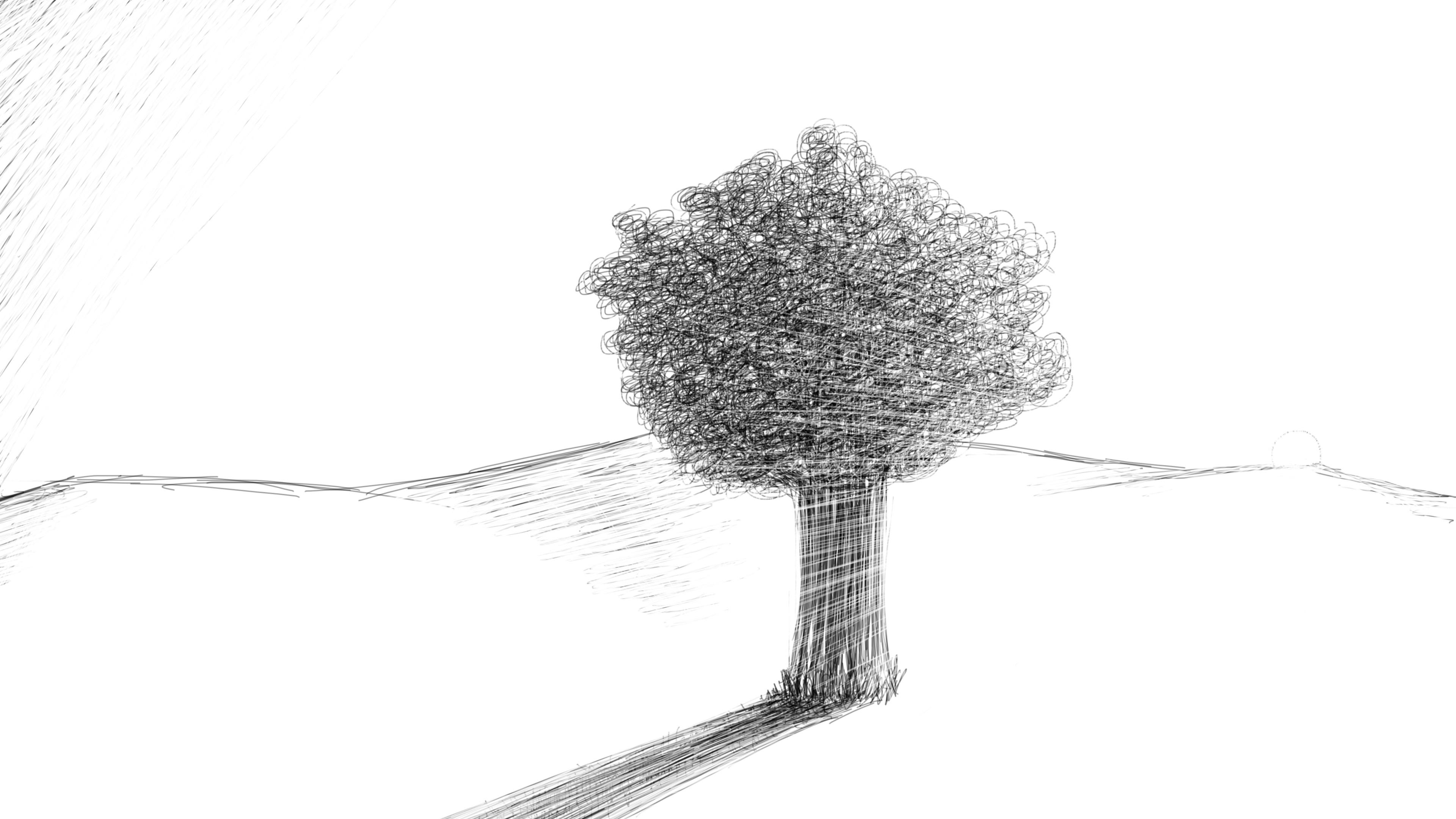 Wallpaper Pohon Pemandangan Gambar Ilustrasi Minimalis