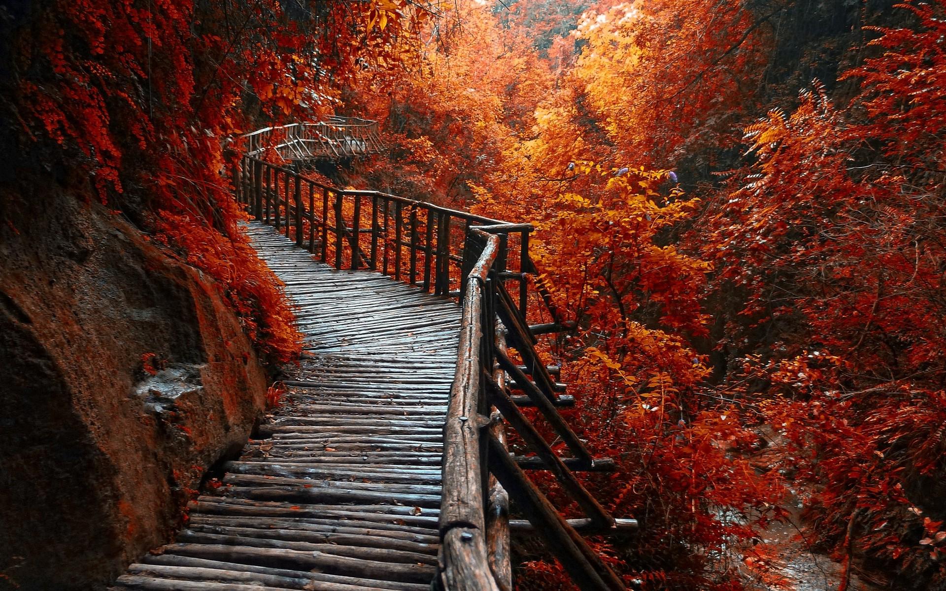 Осень мосты картинки