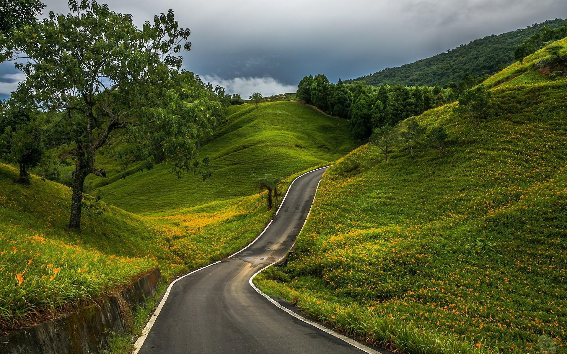 картинка с природой и дорог нужного угла обзора