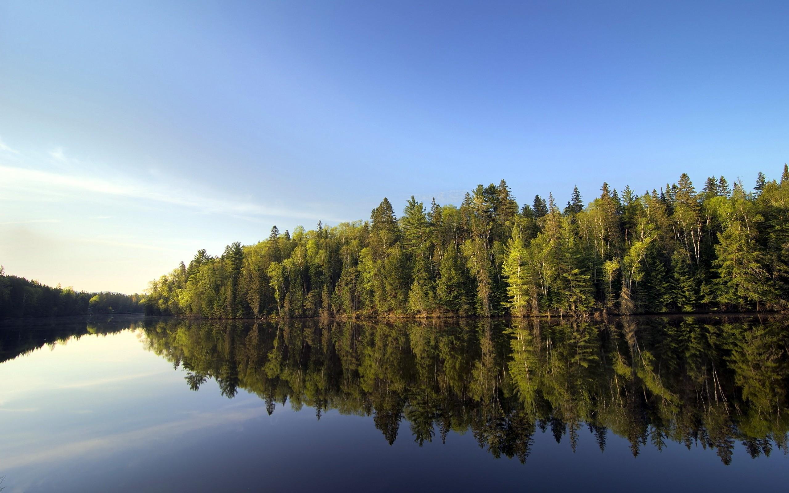 одни картинки на рабочий стол природа лес озера реки облака татуировку своем теле