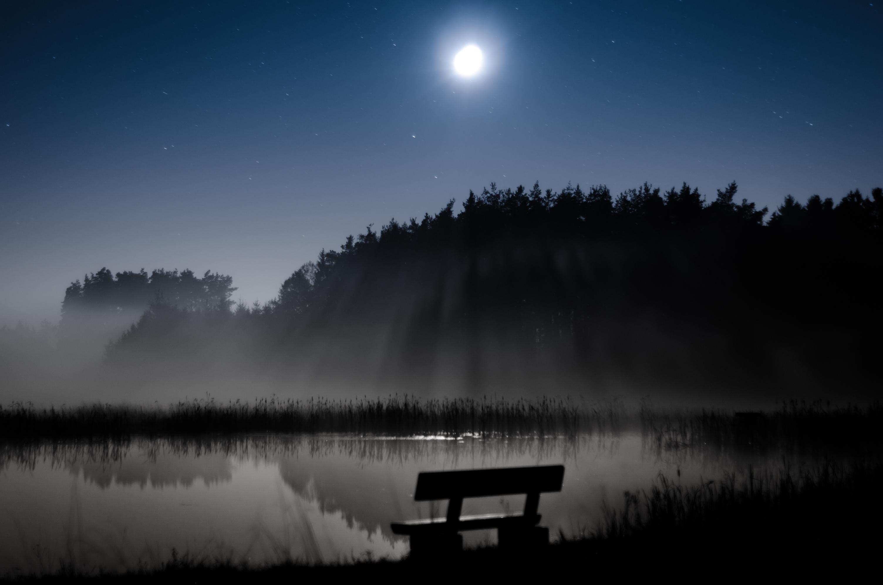 келли владела фото туманная ночь в россии городе