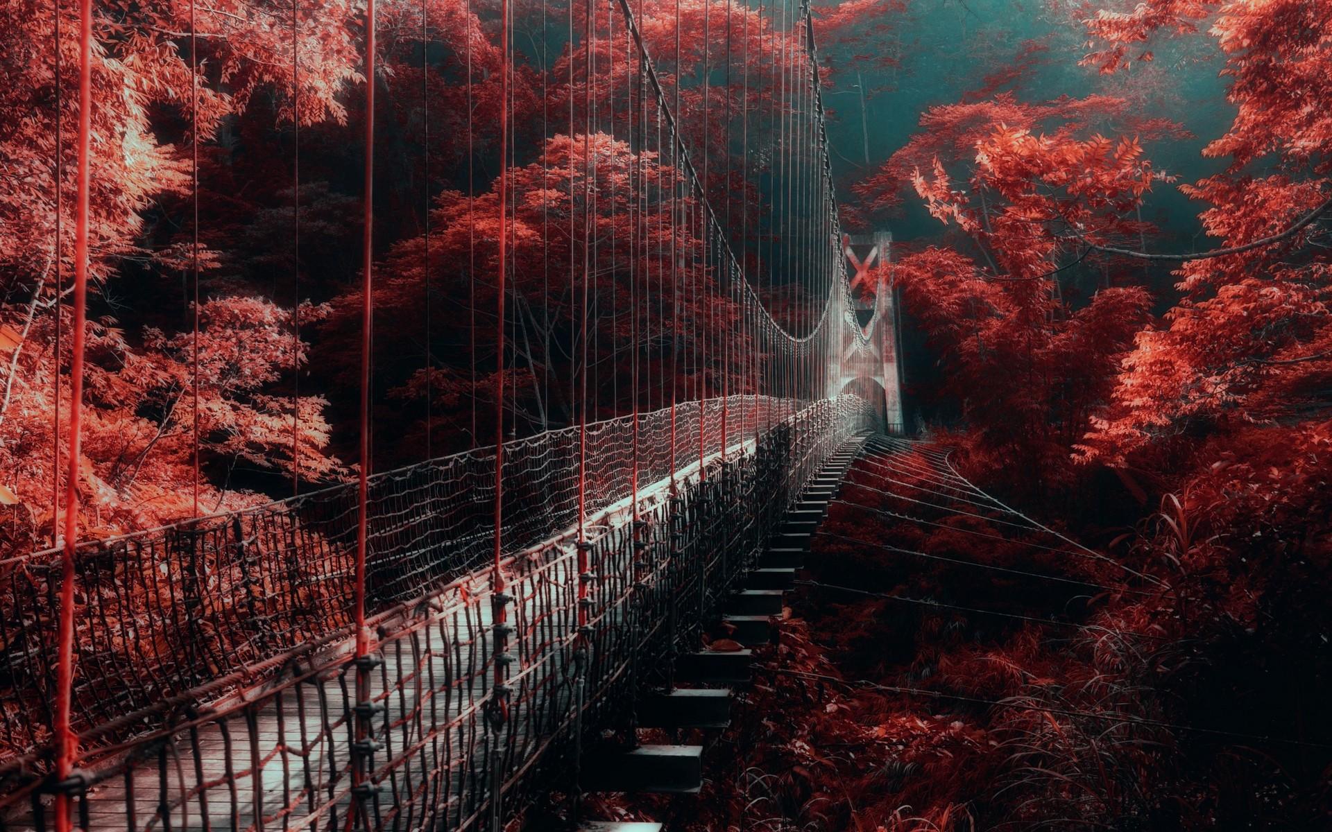 Оригинальные пейзажи фото красный