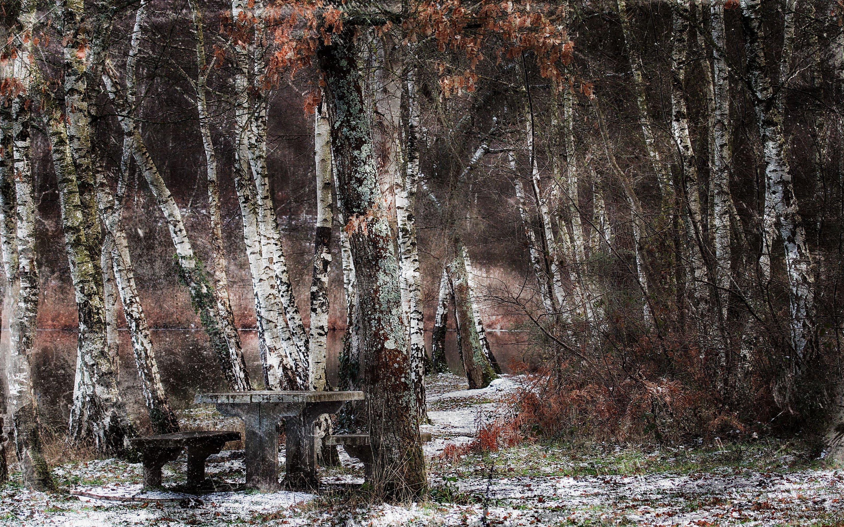 Wallpaper Pohon Pemandangan Air Alam Salju Musim Dingin  # Model Table Telz En Bois
